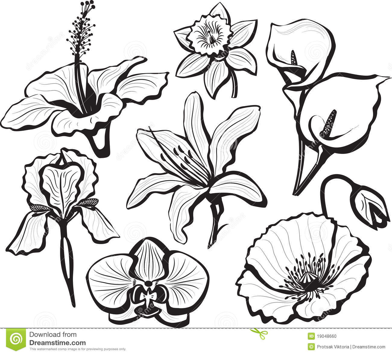 Simple black and white flower drawing comousar simple black and white flower drawing easy flower drawings in black mightylinksfo Choice Image