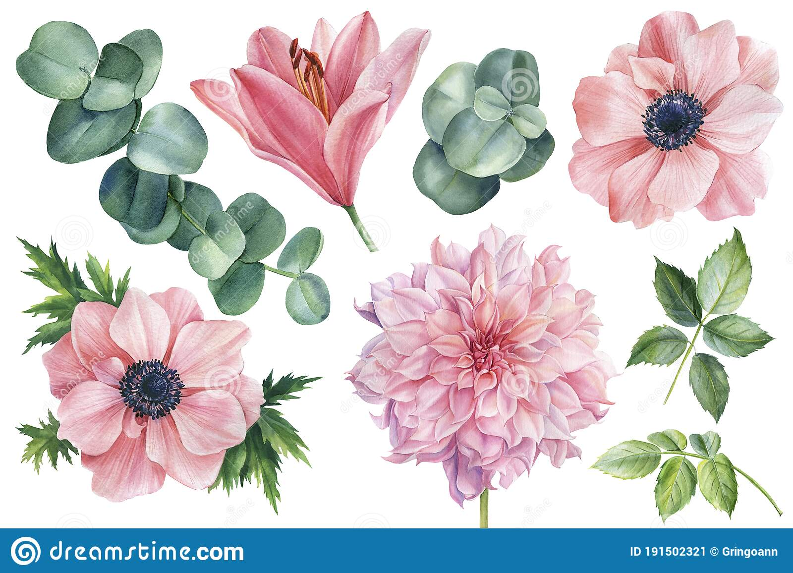 Pink Dahlia Stock Illustrations 2 967 Pink Dahlia Stock Illustrations Vectors Clipart Dreamstime