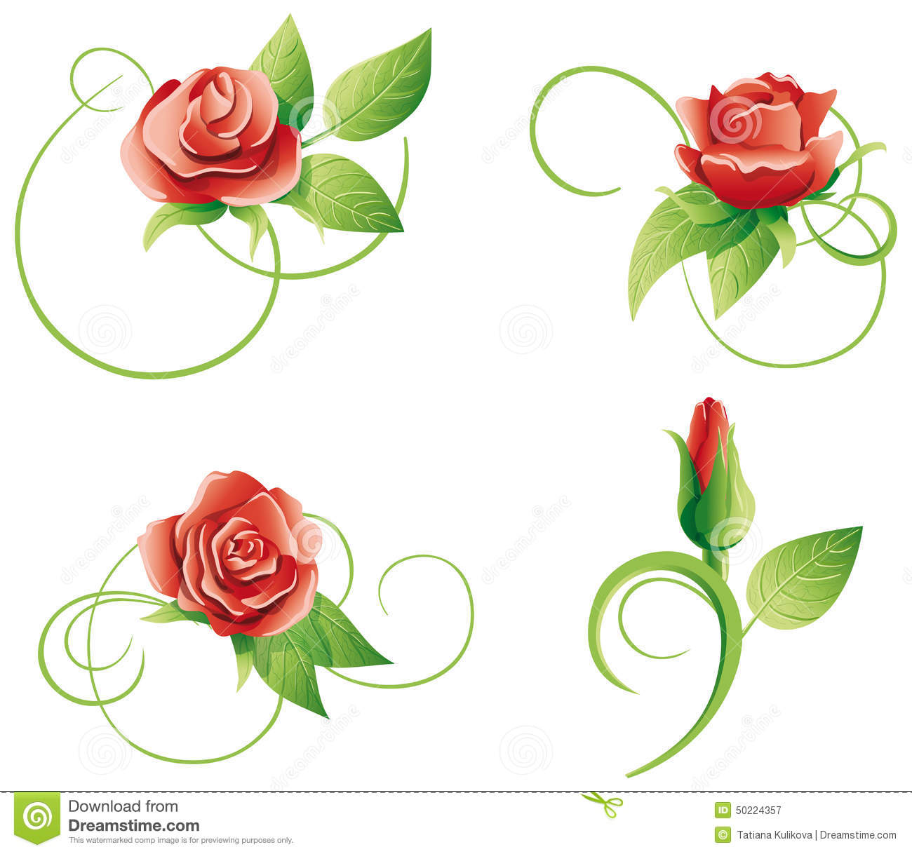 swirly roses background bouquet - photo #8