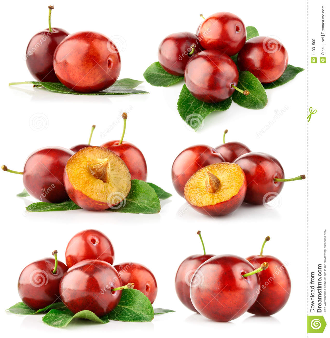 Set fresh plum fruits with cut and green leaves