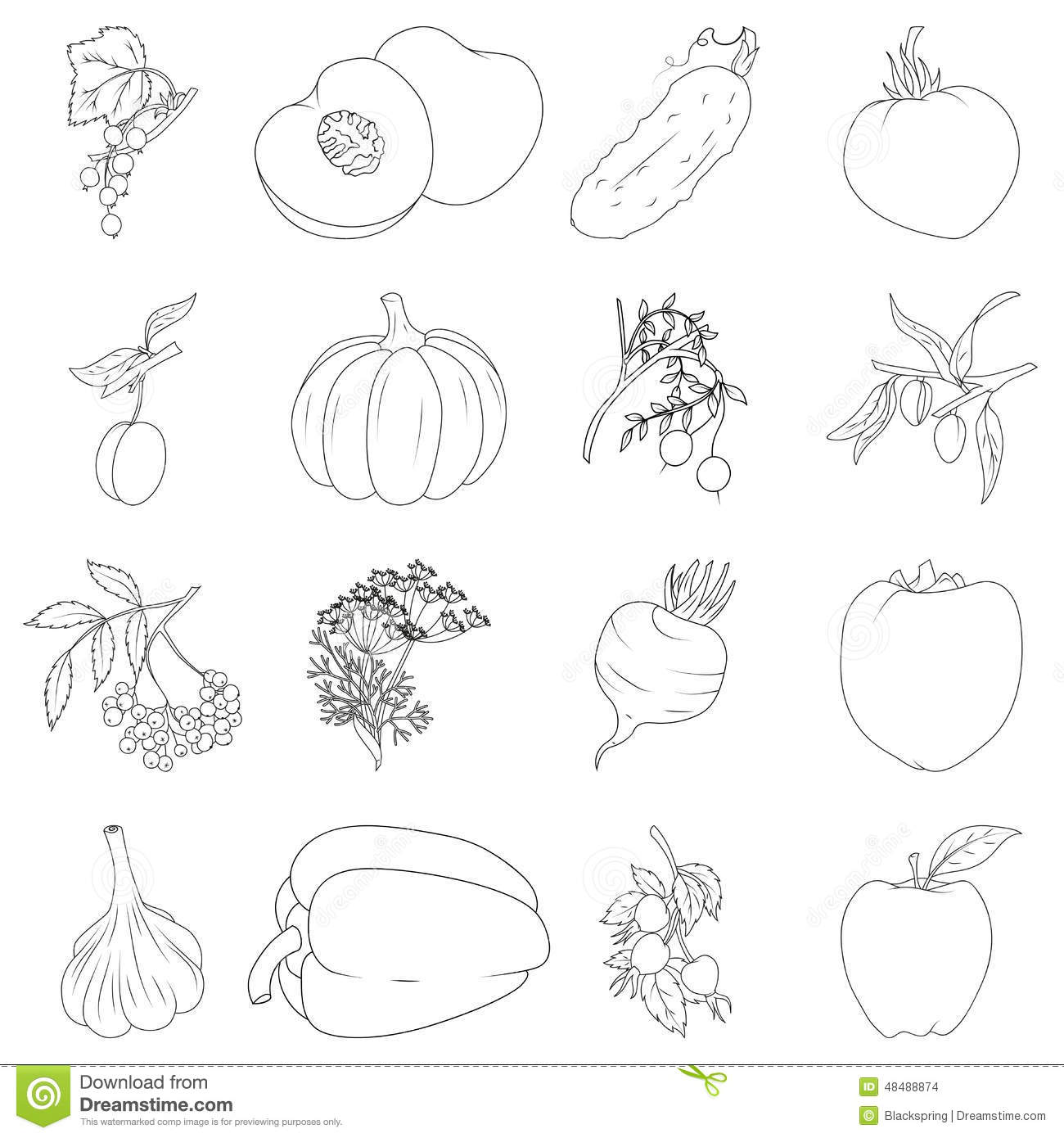 Set Of Fruits And Vegetables Stock Vector Illustration Of