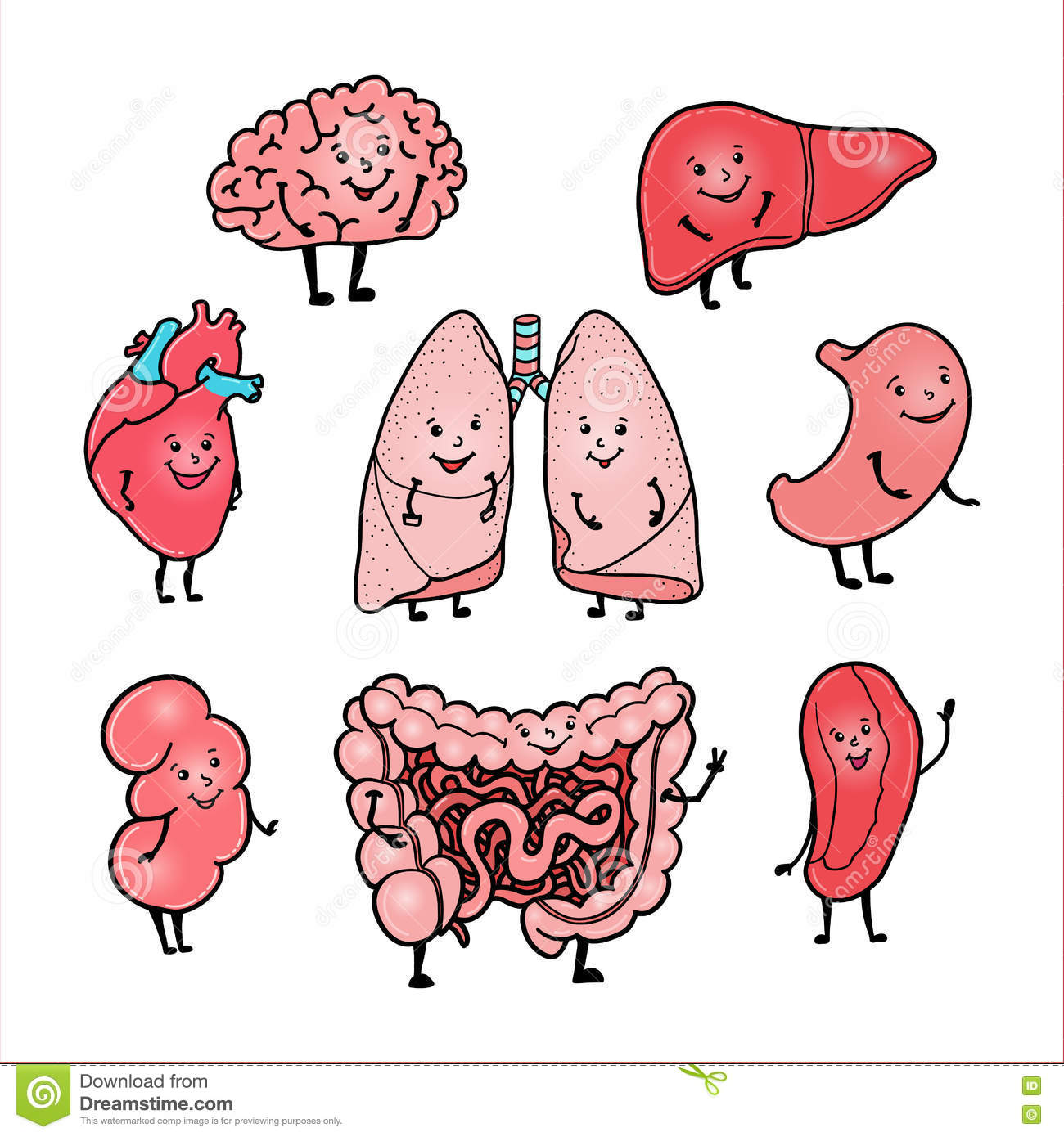 Set Of Funny Human Organs With Cute Smiling Faces Stock Vector ...