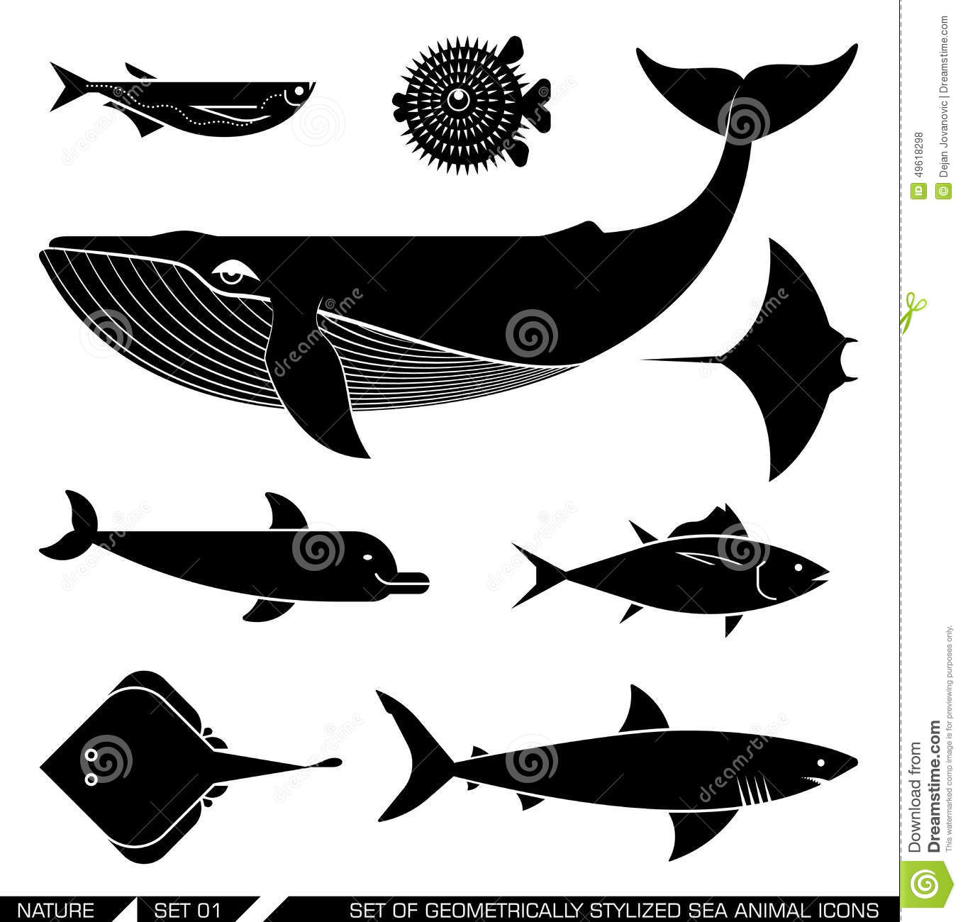 Set Of Geometrically Stylized Sea Animal Icons Stock Vector - Image ... Whale Shark Size