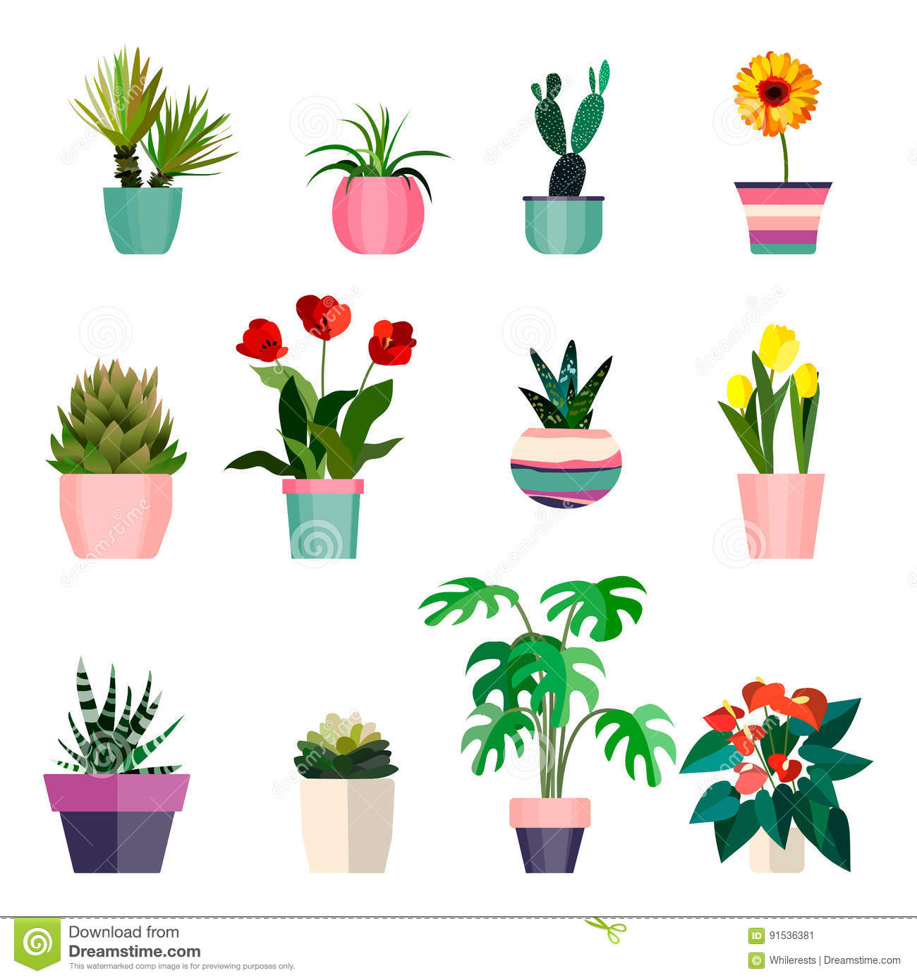 Plant Pots Set In The House Stock Photo Cartoondealer