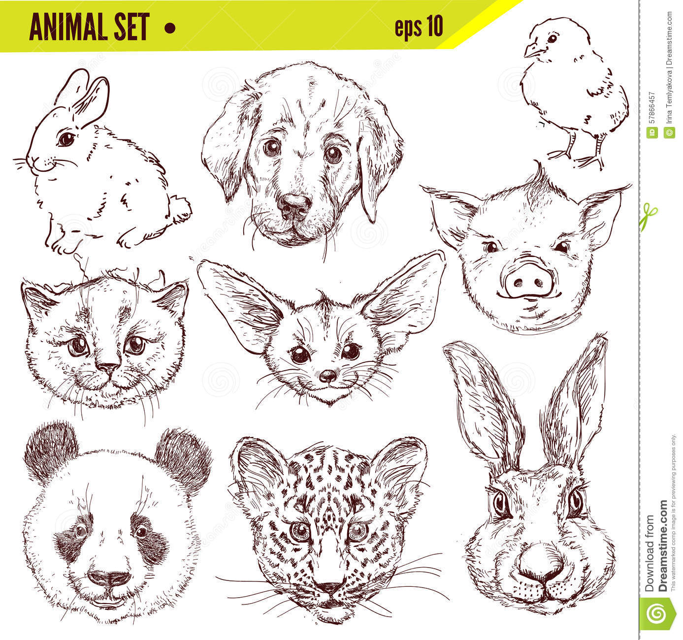 Uncategorized Drawn Pictures Of Animals set of hand drawn animals vector illustration stock royalty free download animals