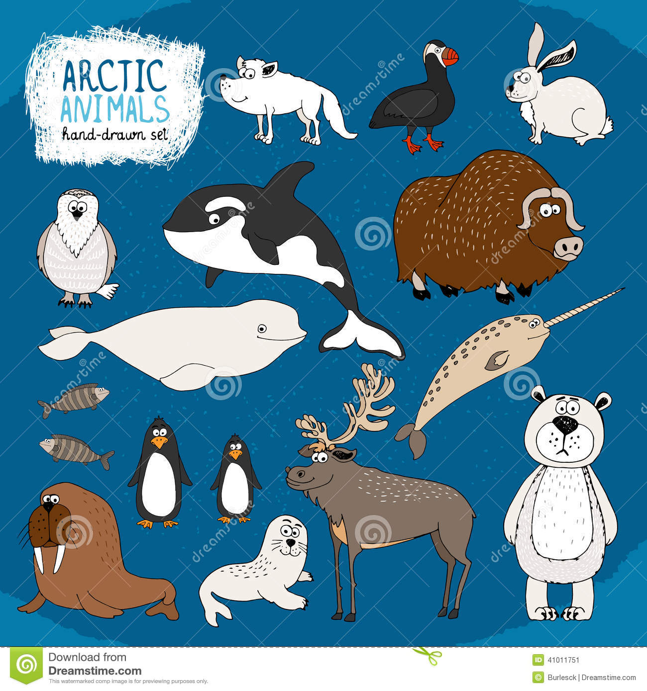 Set Of Hand Drawn Arctic Animals Stock Vector