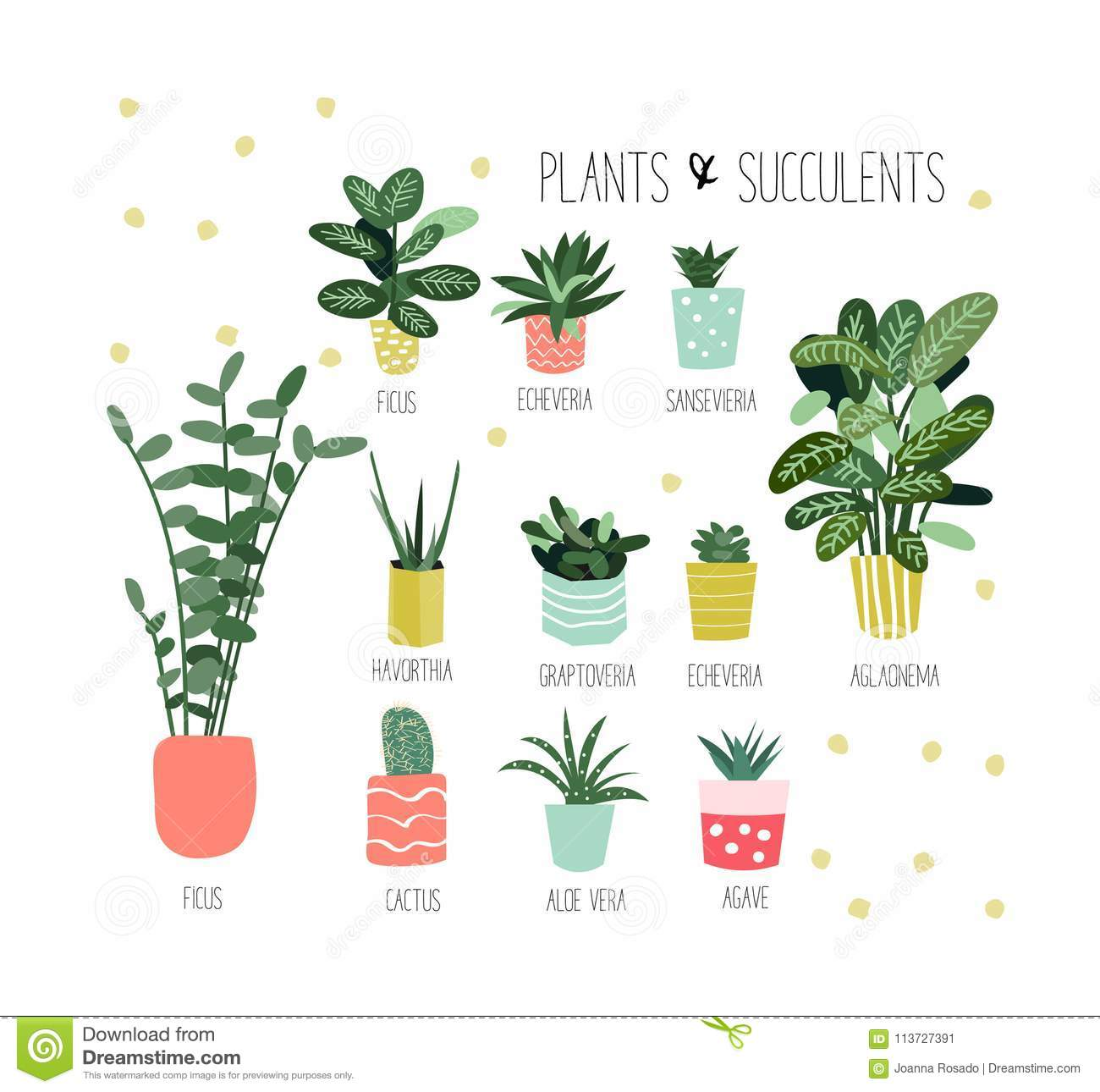 Potted Plants Collection. Succulents And House Plants. Hand ... on indoor seedlings, indoor ferns, indoor orchids, indoor roses, indoor trees, indoor plants, indoor shrubs, indoor palms, indoor organic gardening, indoor spices,