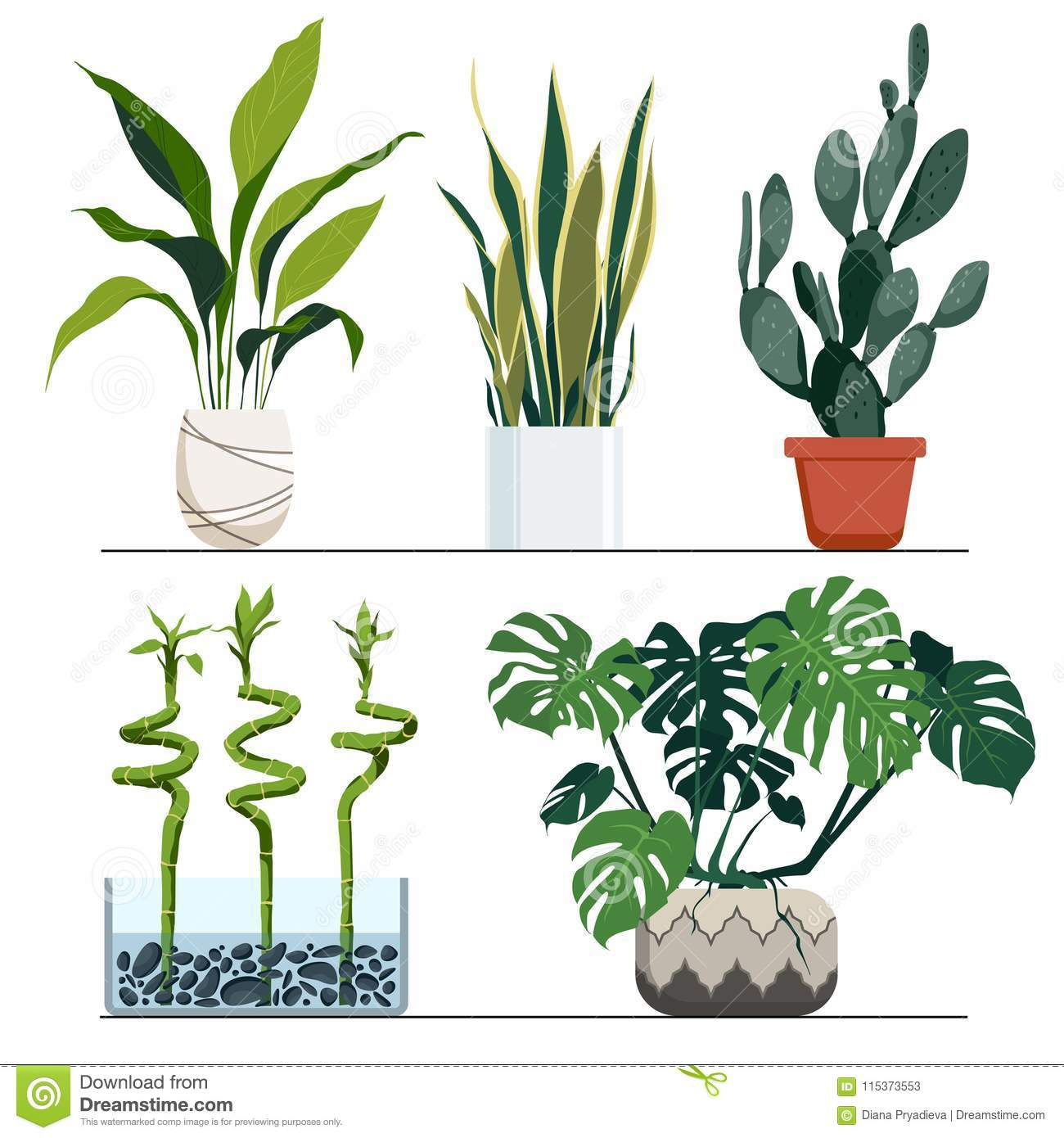 Set Of Indoor Plants In Pots Vector Hand Drawn Illustration Modern And Elegant Home Decor Isolated On White Background