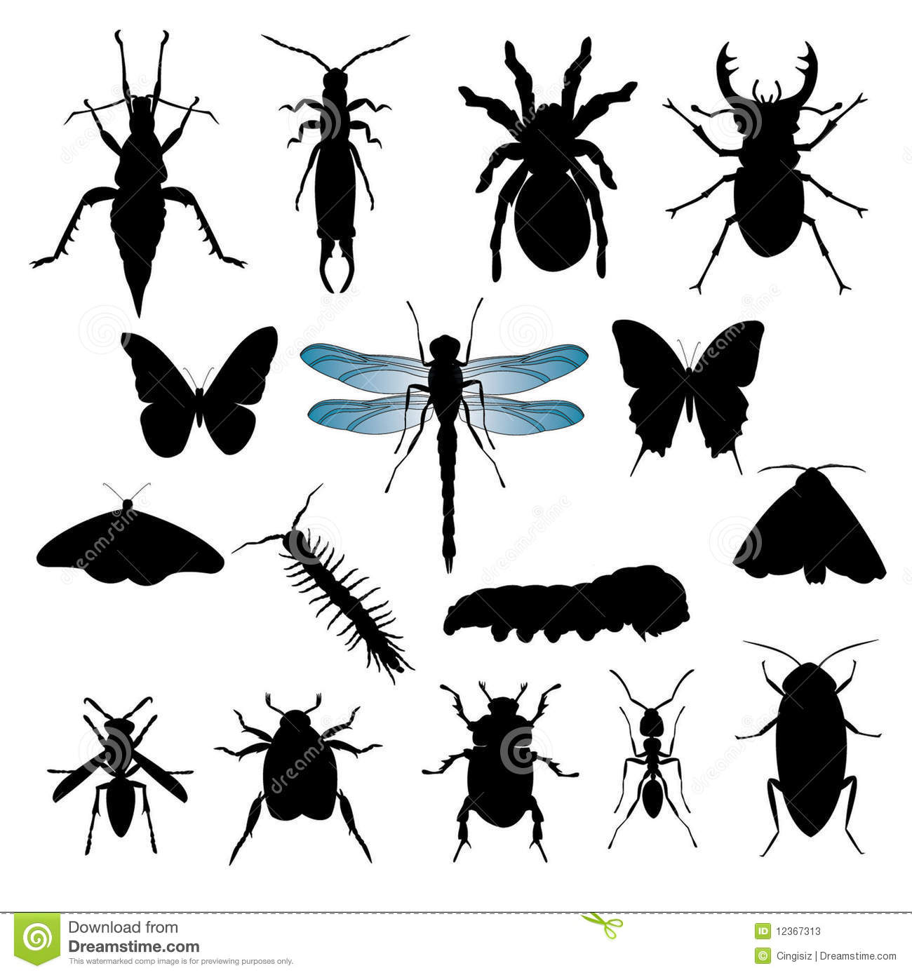 Set Of Insect Silhouettes Stock Photos Image 12367313