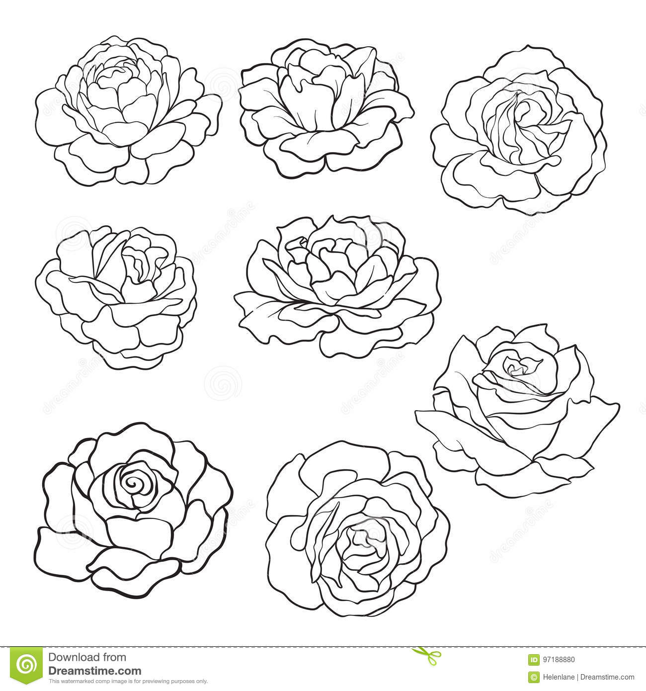 Set of isolated rose outline drawing stock line vector