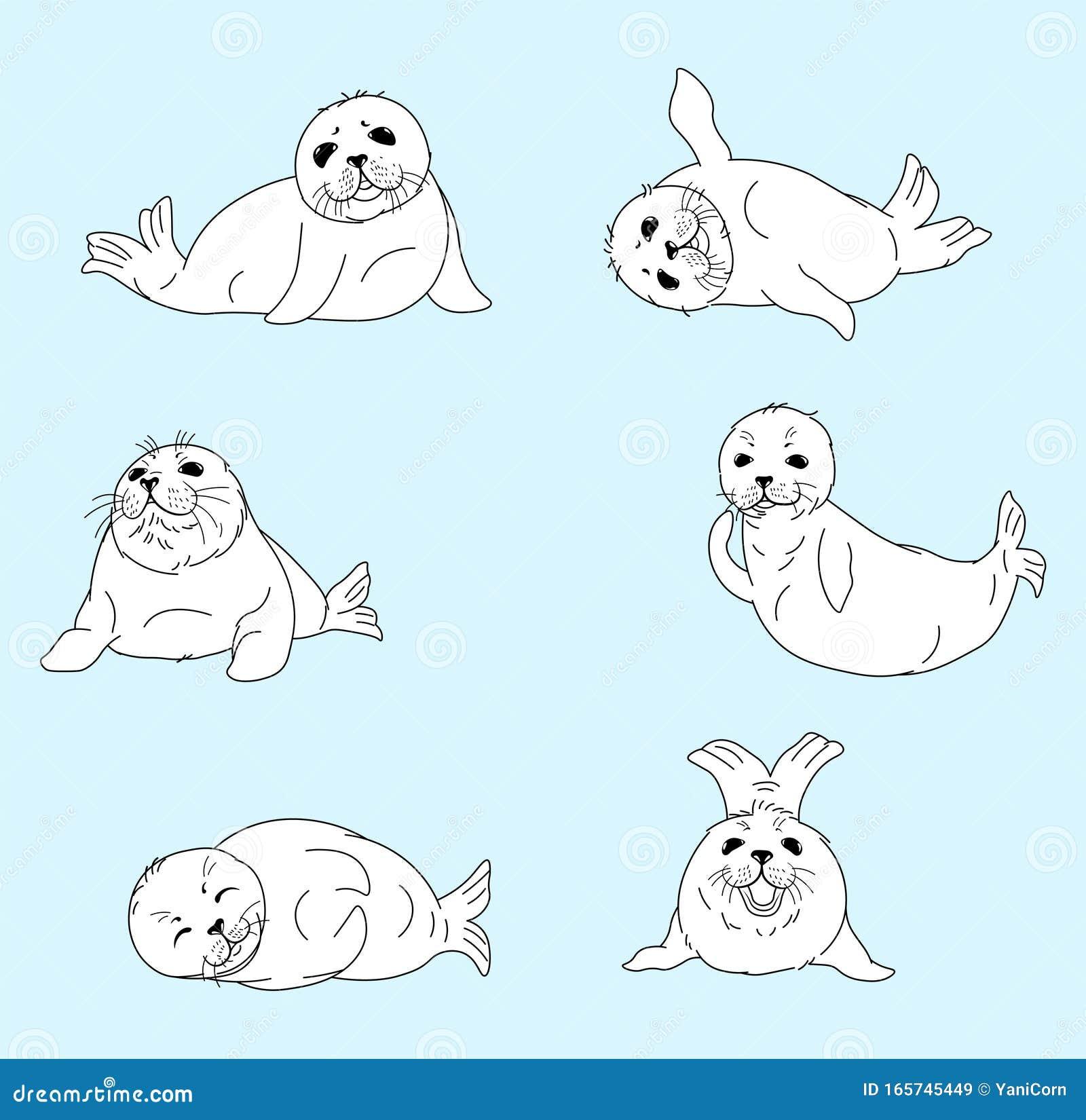 Set Of Kawaii Fur Seals Baby Nerpas Cartoon Drawing Isolated