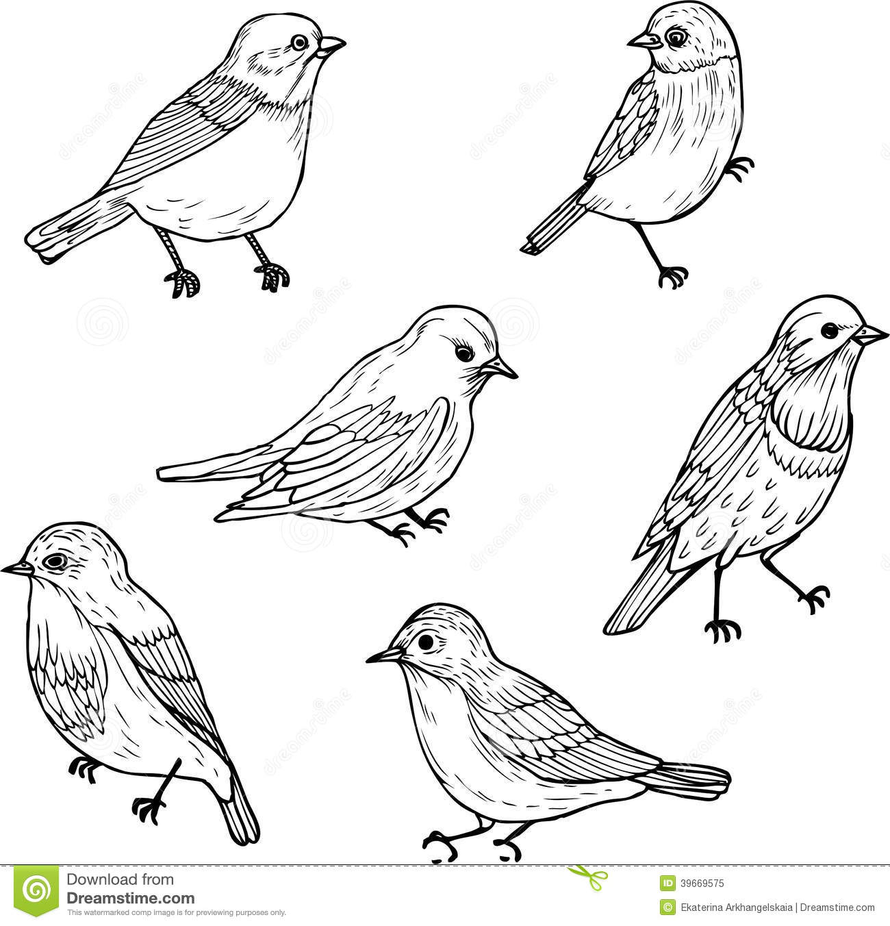 Set Of Linear Drawing Birds Stock Vector Image 39669575