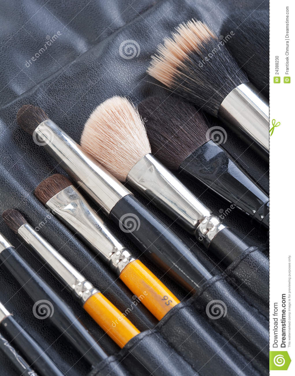 Set of make-up artists brushes