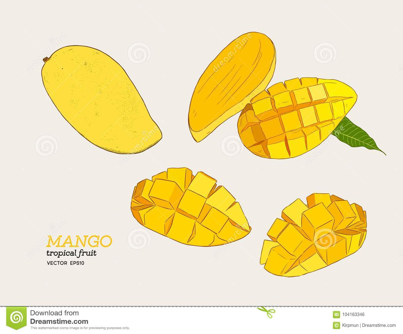 Set Of Mangoes Hand Draw Sketch Vector Stock Vector Illustration