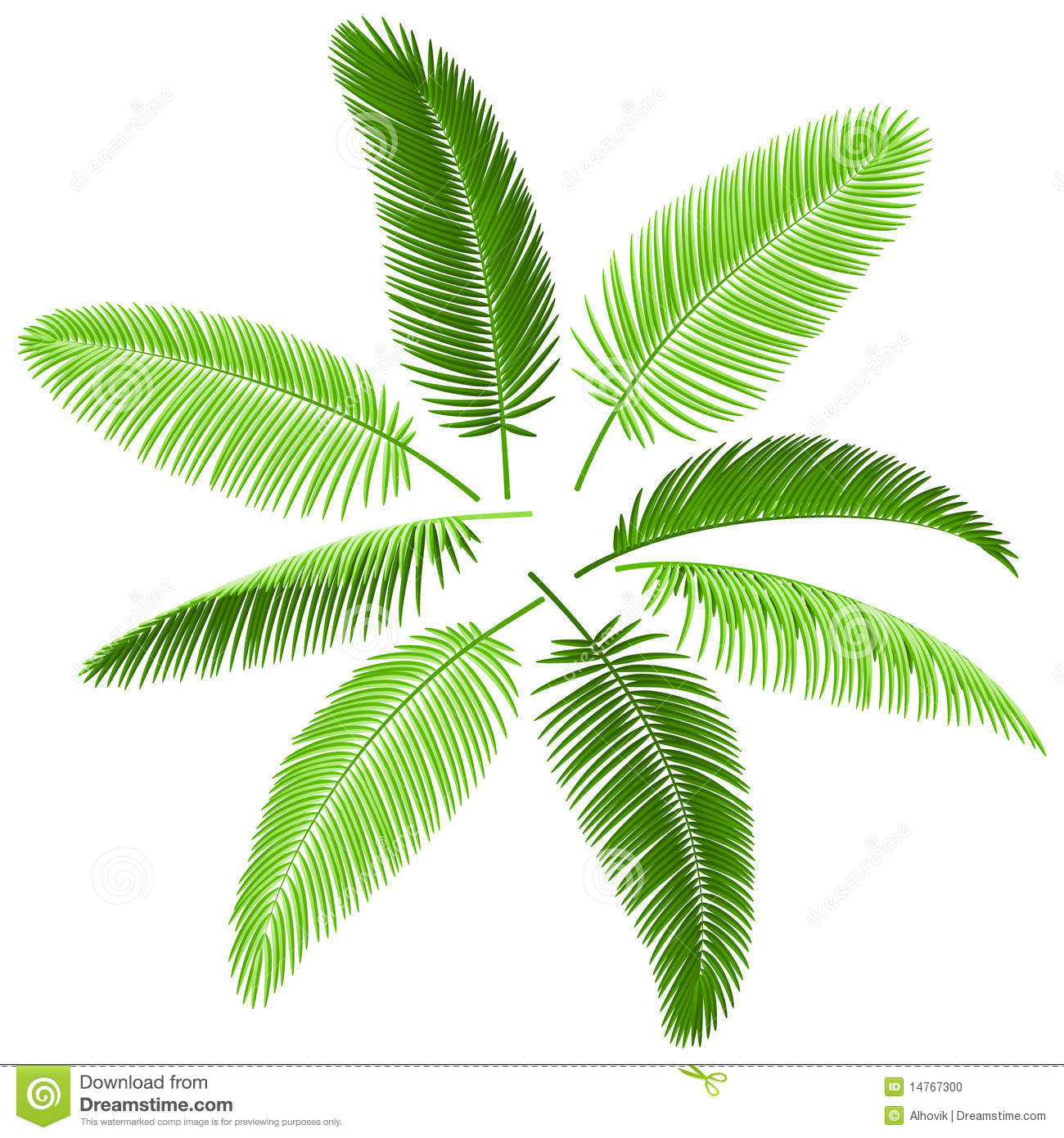 Tropical Palm Leaf Clip Art Set of palm leaves