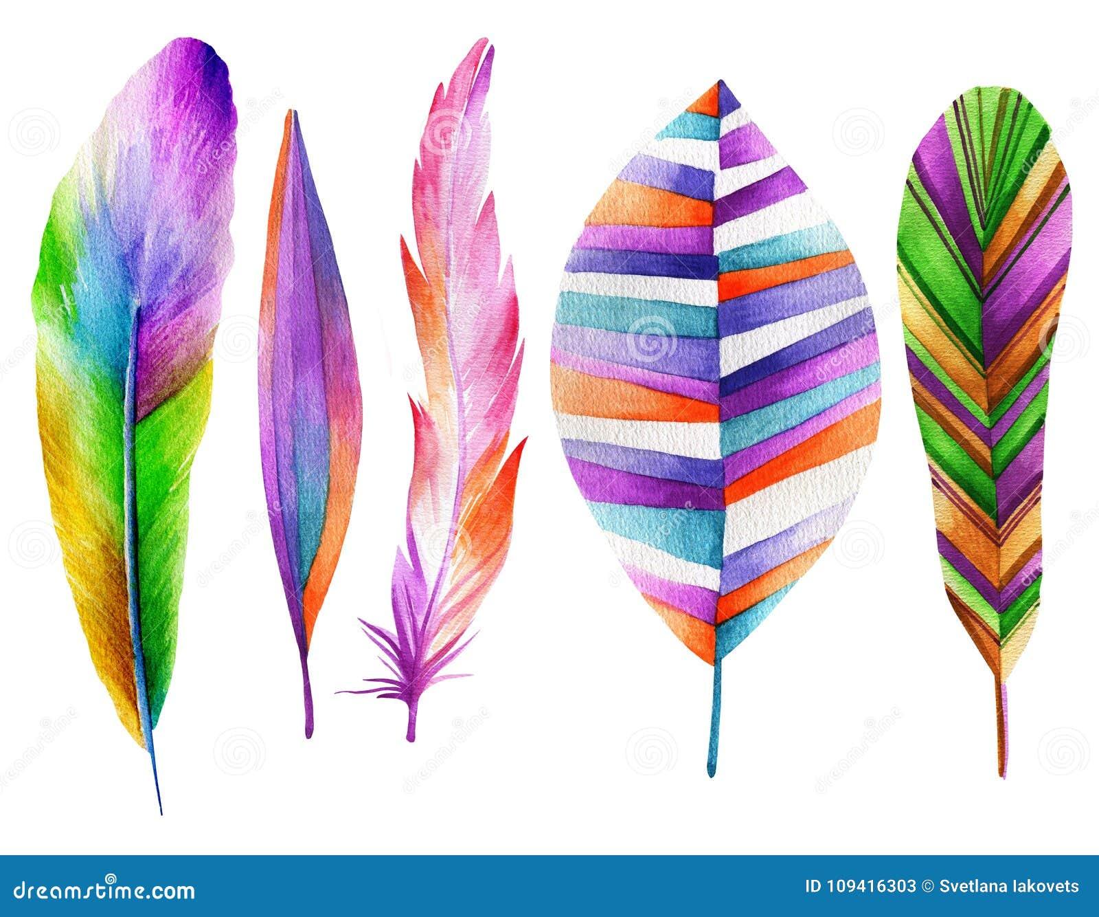 Set piórko bajecznie ptaki banki target2394_1_ kwiatonośnego rzecznego drzew akwareli cewienie