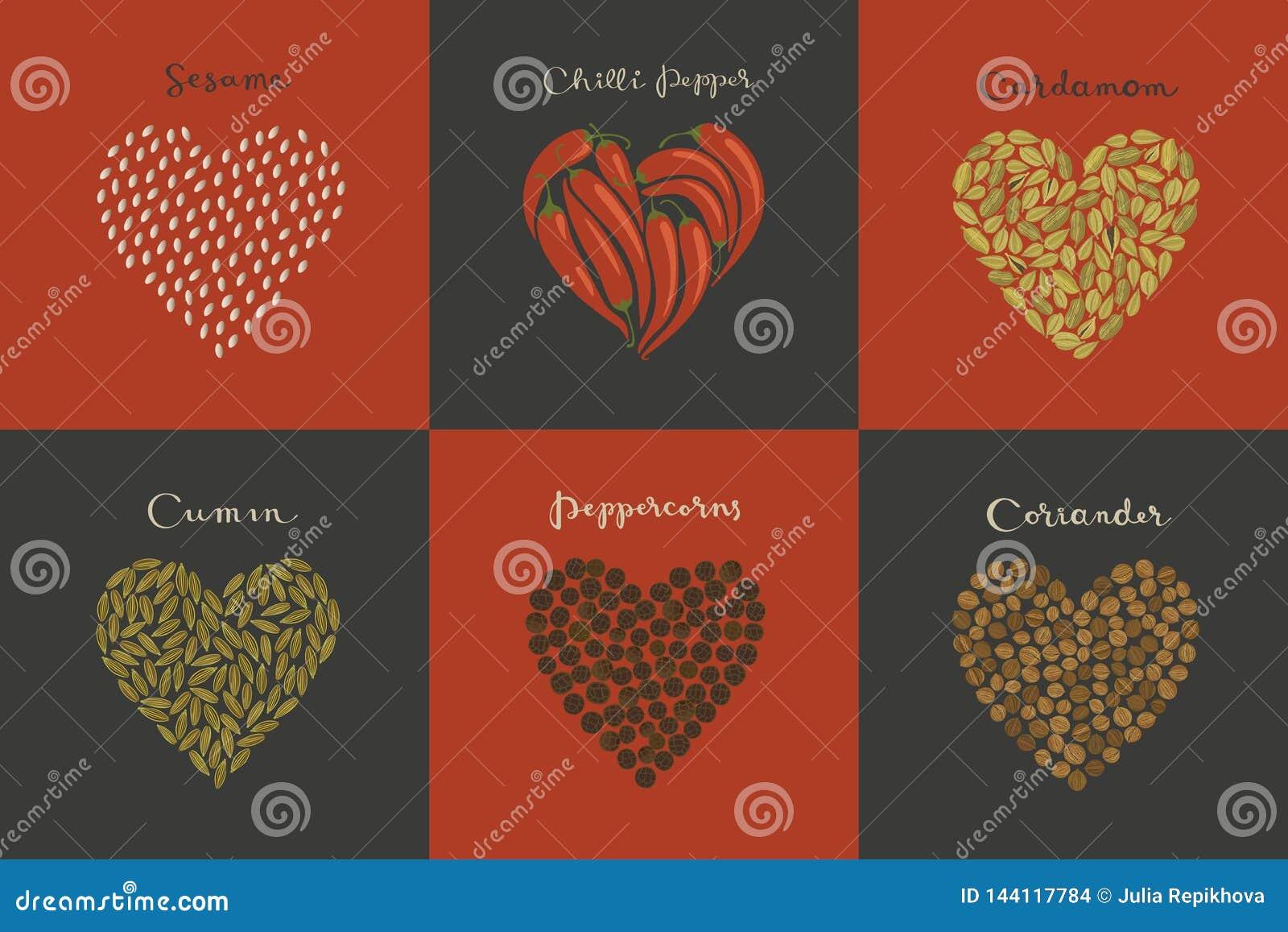 Set pikantność w kierowym kształcie Sezam, kmin, kardamon, Chili, Peppercorns, kolendery