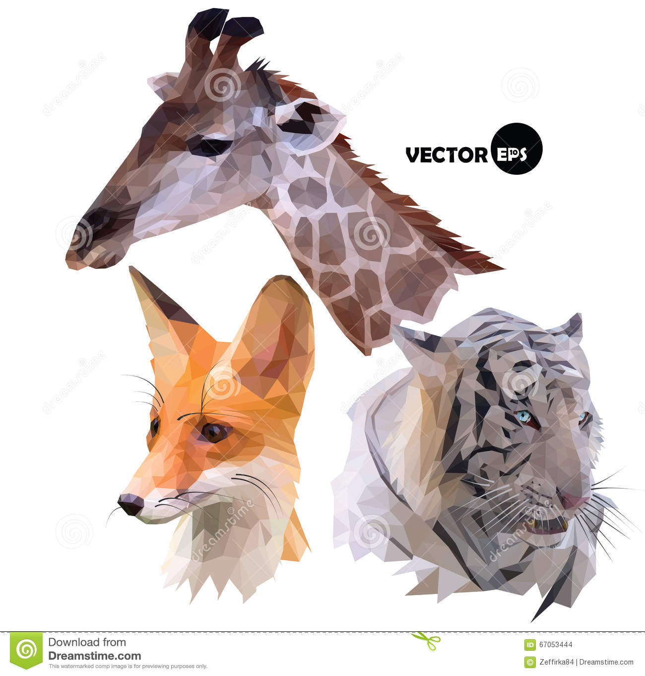 Set Of Portraits Wild Animals A Giraffe White Tiger Red Fox