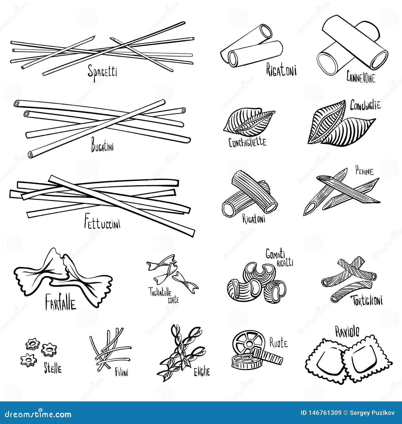 Set różni typy makaron