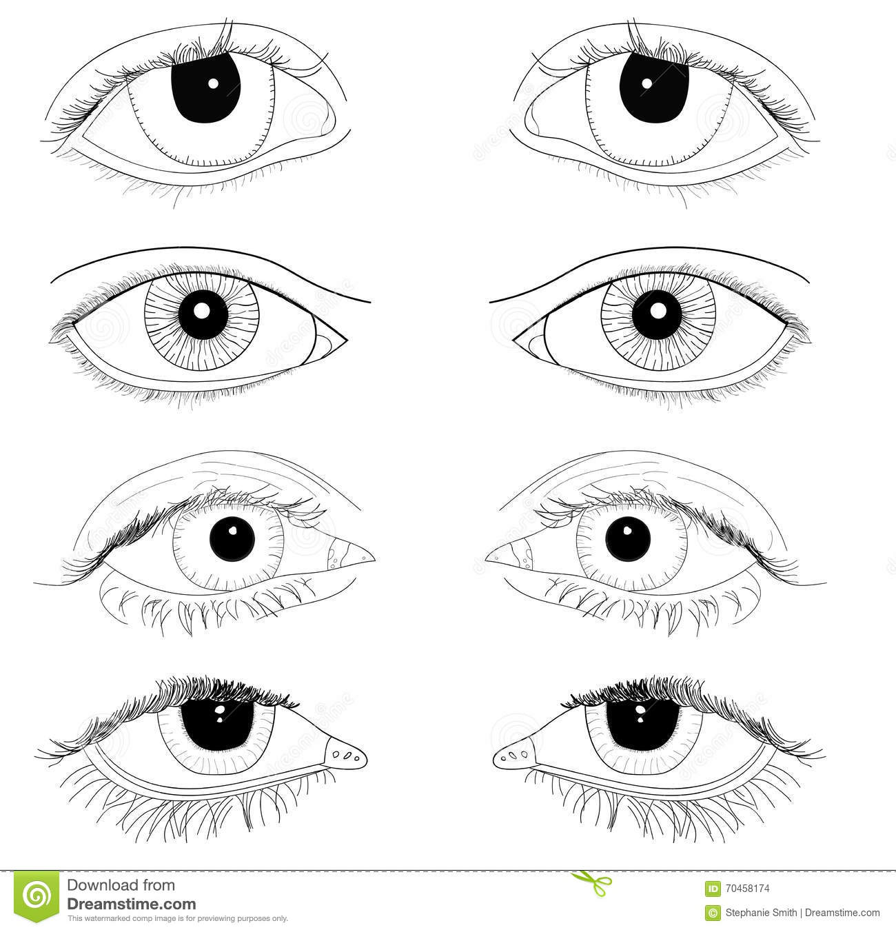 Line Art Eye : Set of realistic eyes hand drawn line art illustrations no