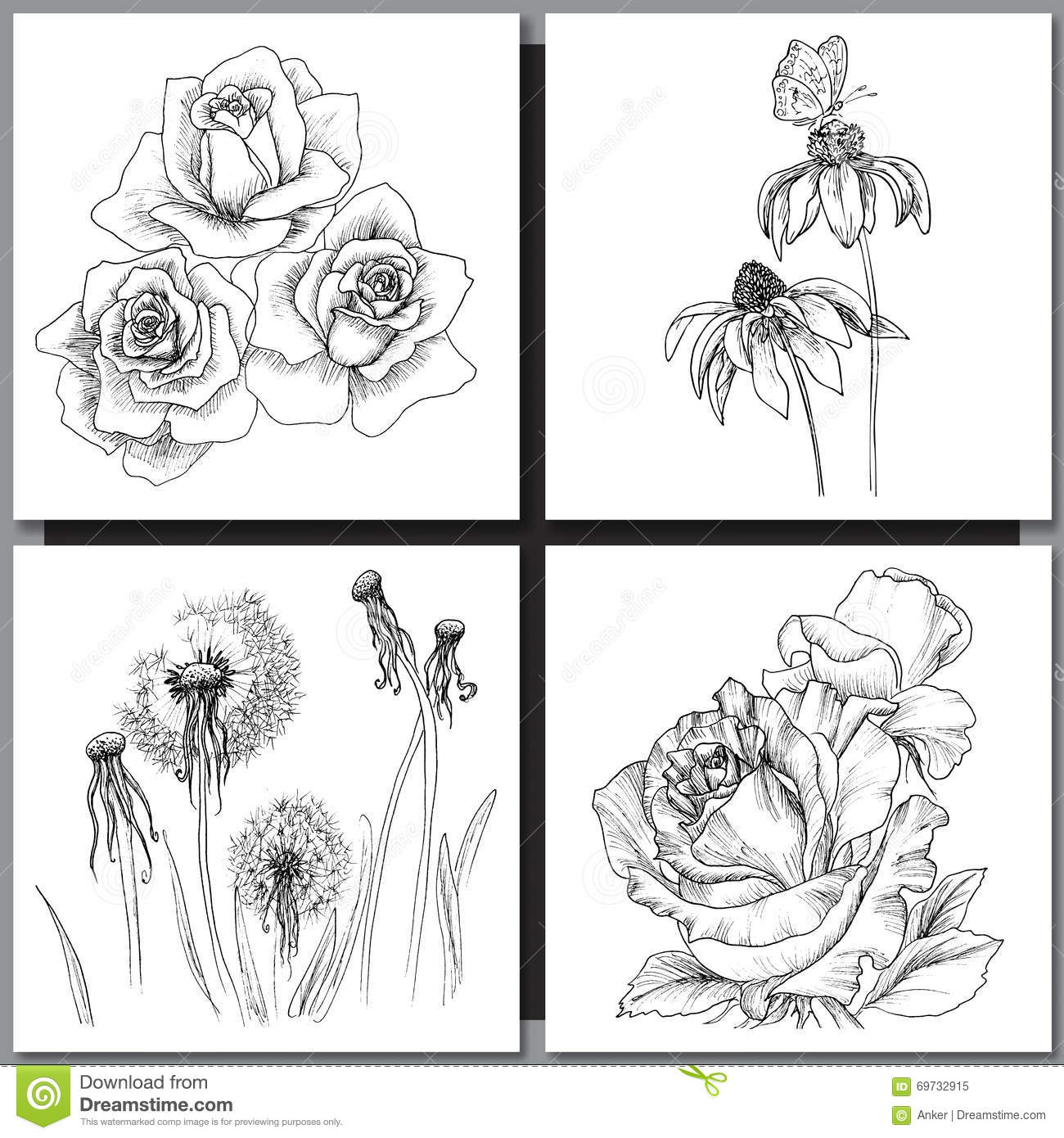 Line Drawing Coneflower : Set of romantic vector background with three echinaceas