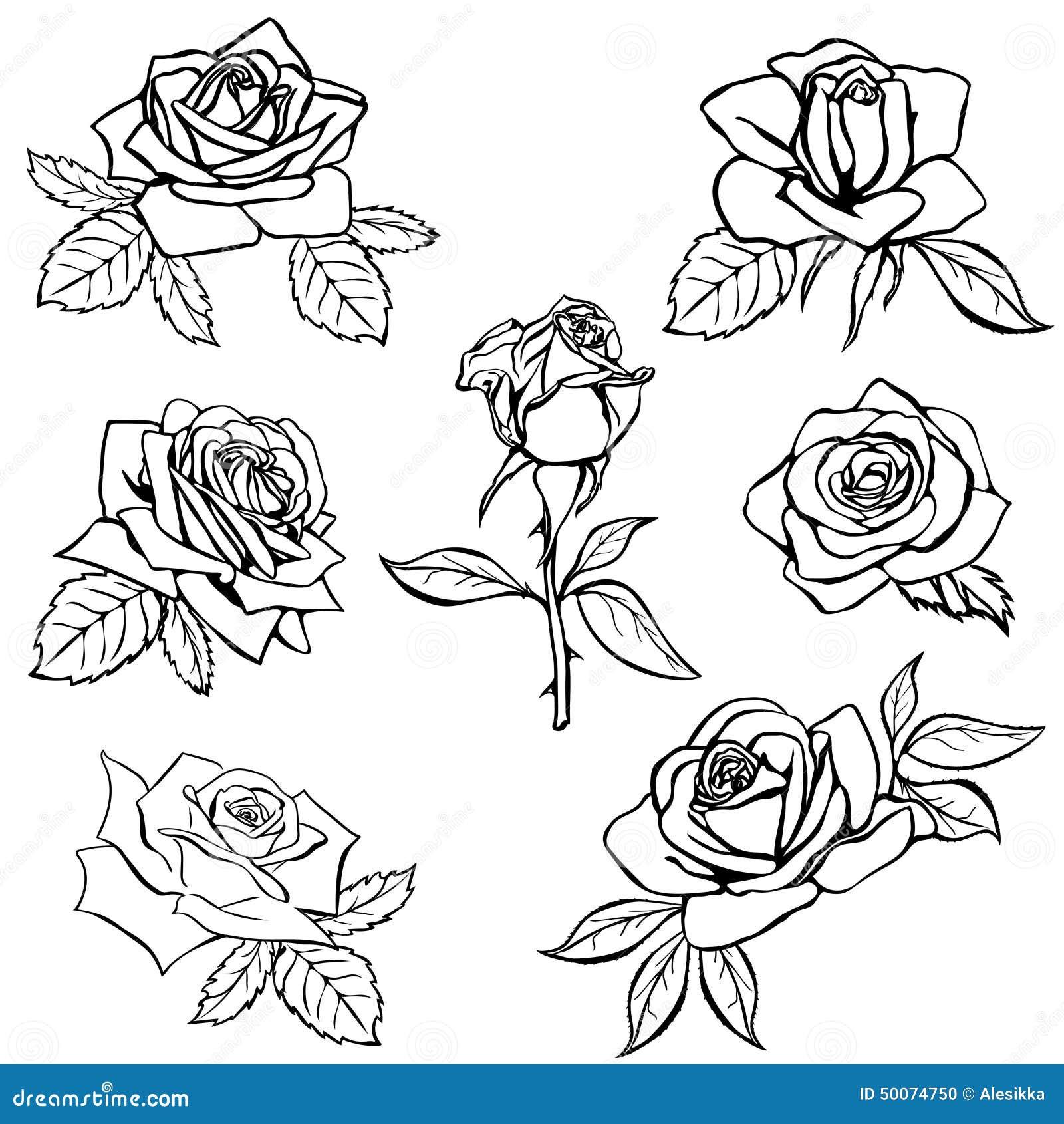 set rose sketch stock vector illustration of outline 50074750. Black Bedroom Furniture Sets. Home Design Ideas