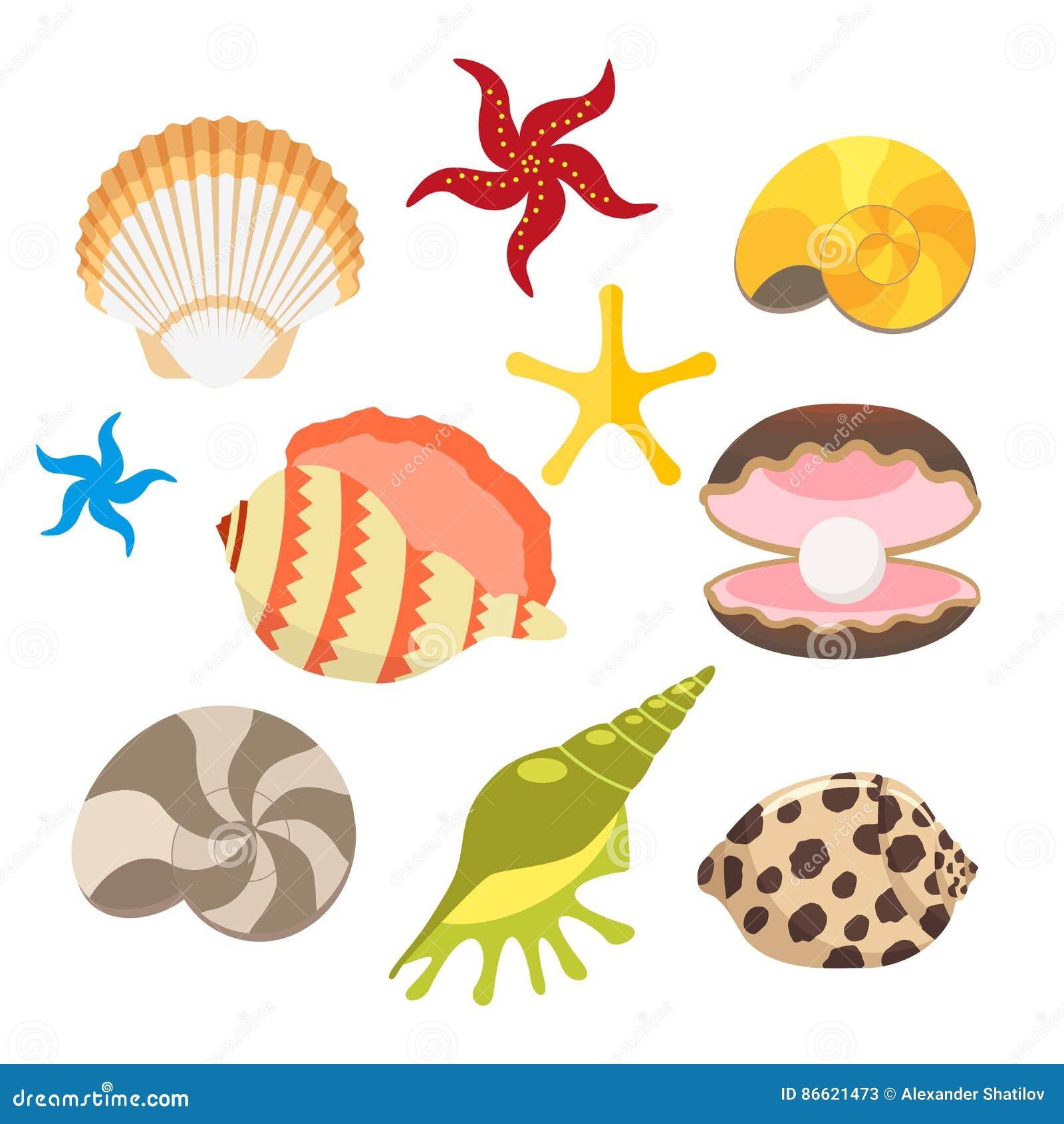 cartoon sea shells on beach www imgkid com the image ninja turtle shell clip art Turtle Shell Designs