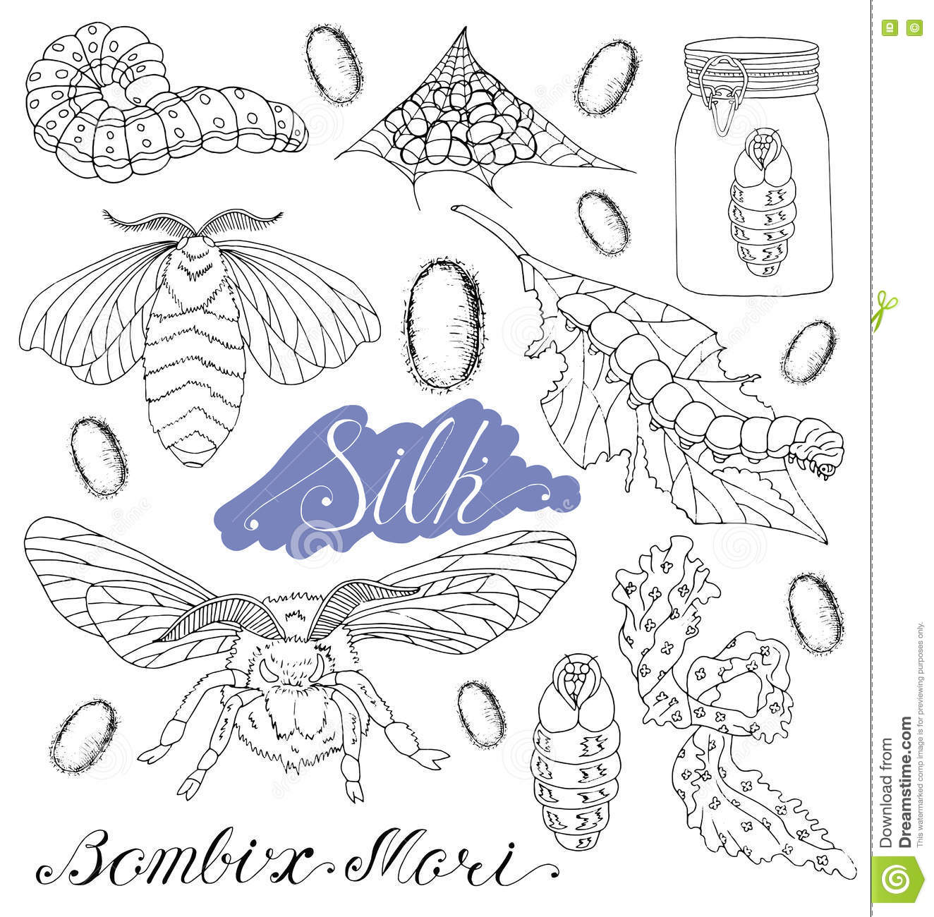 Set With Silk Worms And Moth Stock Illustration - Illustration of ...