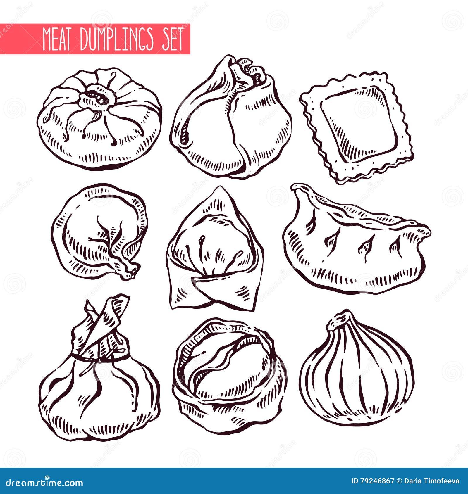 Set Of Sketch Different Dumplings Stock Vector Image