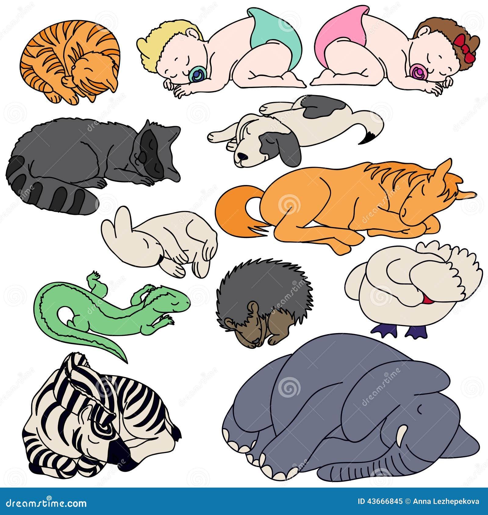Set Of Sleeping Animals And Baby Stock Illustration ...