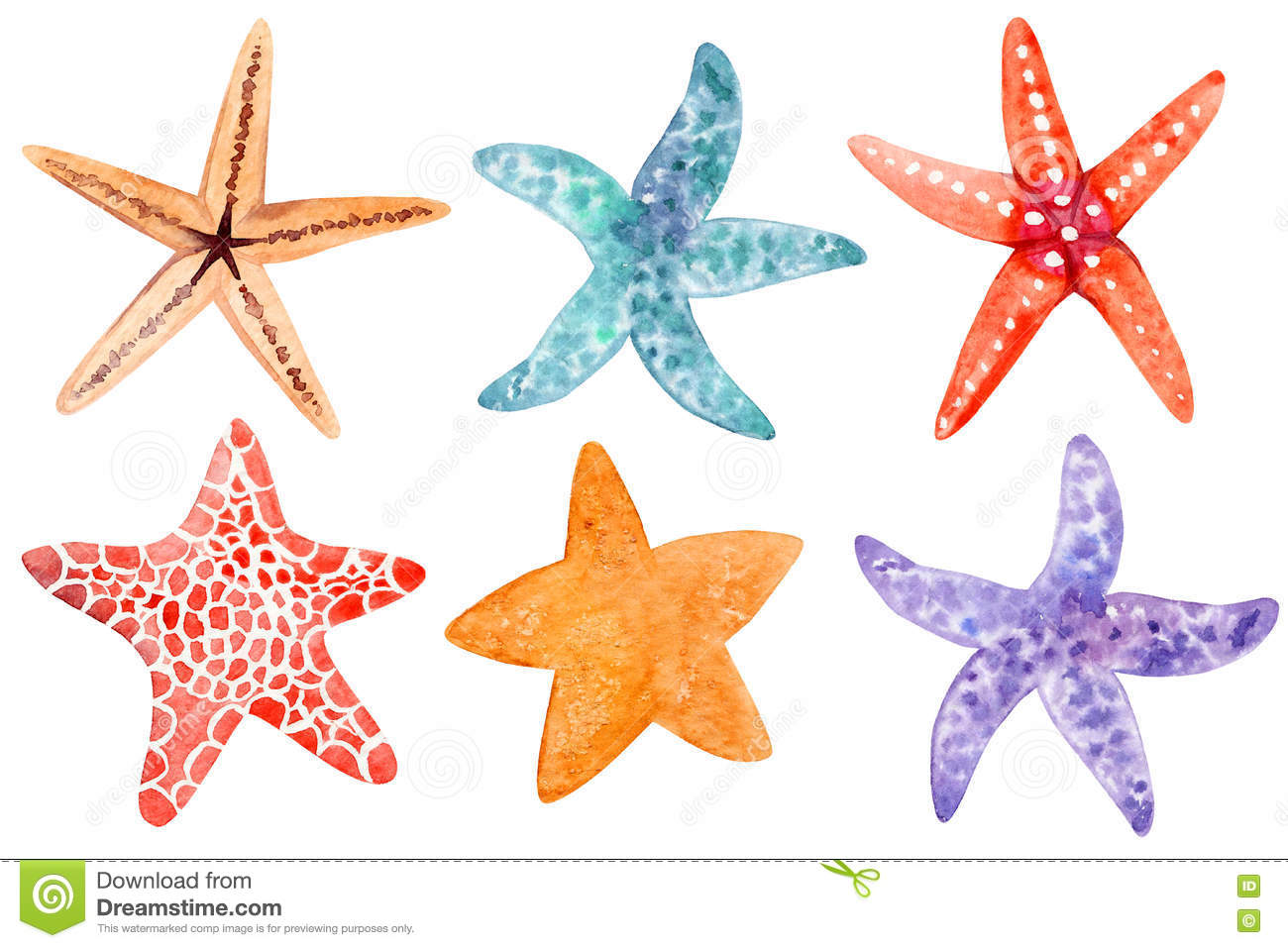 Set Of Starfish Clipart Stock Image Image Of Explore 77543025