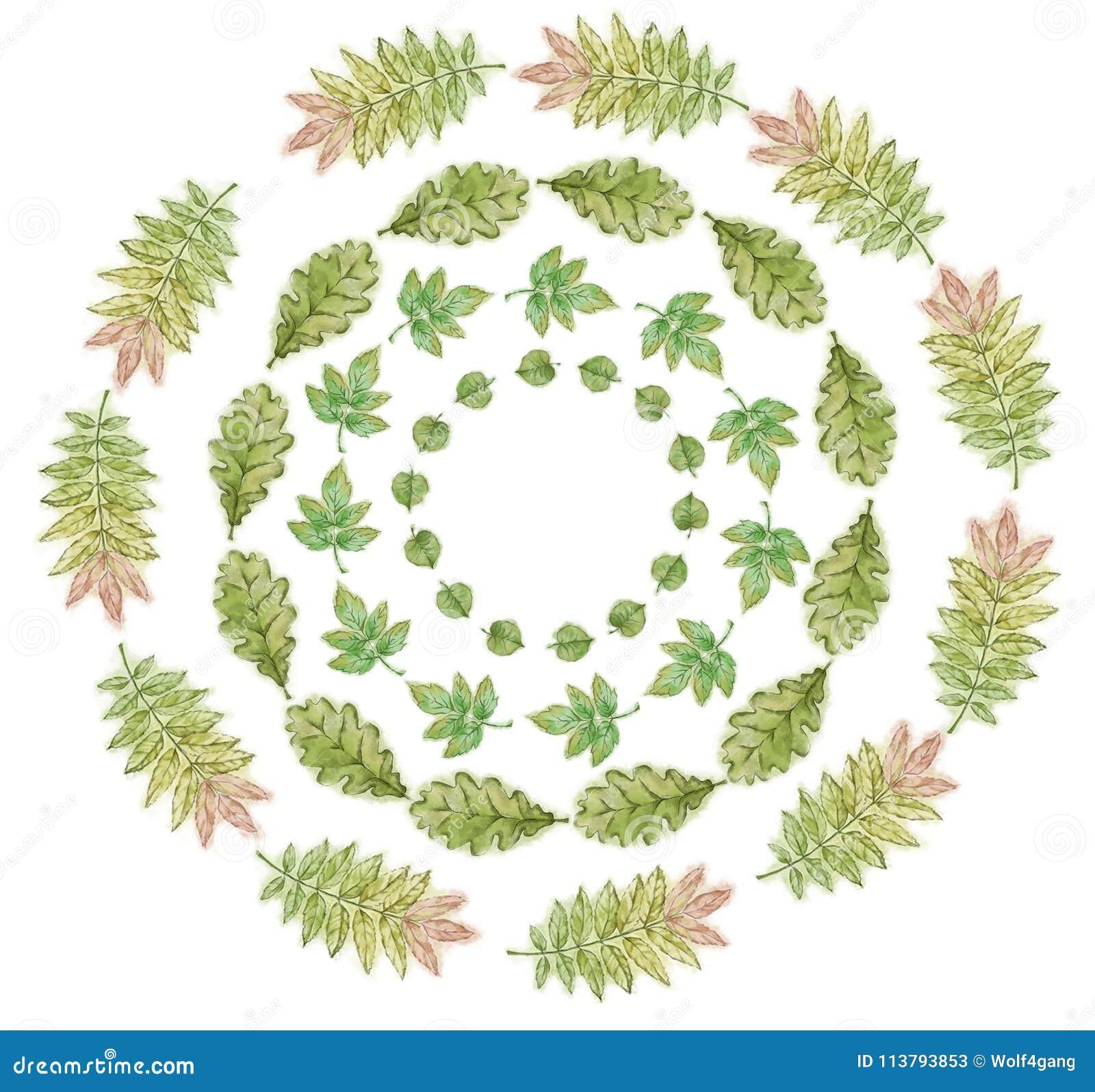 Set Of Summer Leaf Wreaths Hand Painted In Watercolor. Circular ...