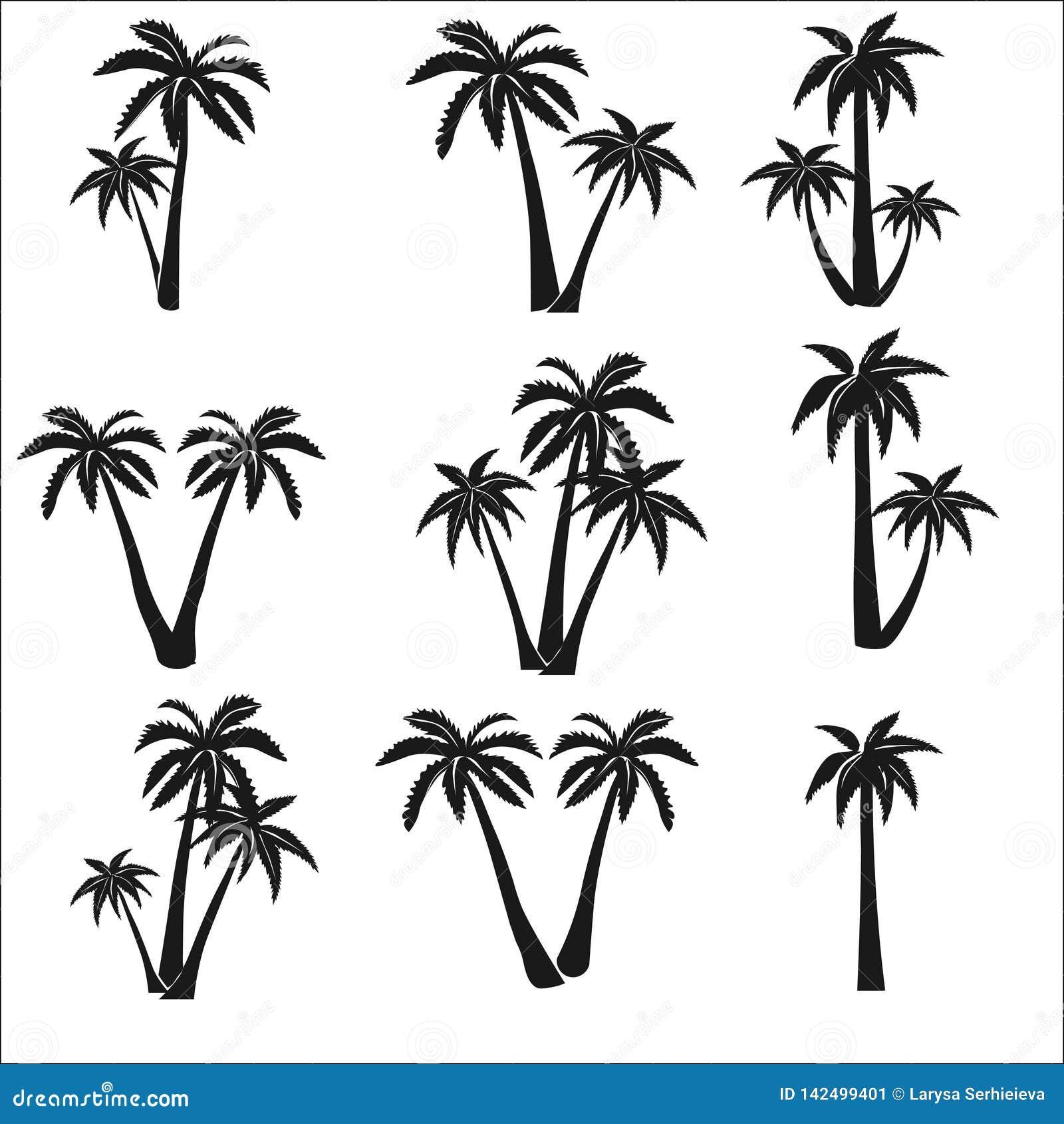 Set sylwetki palmy