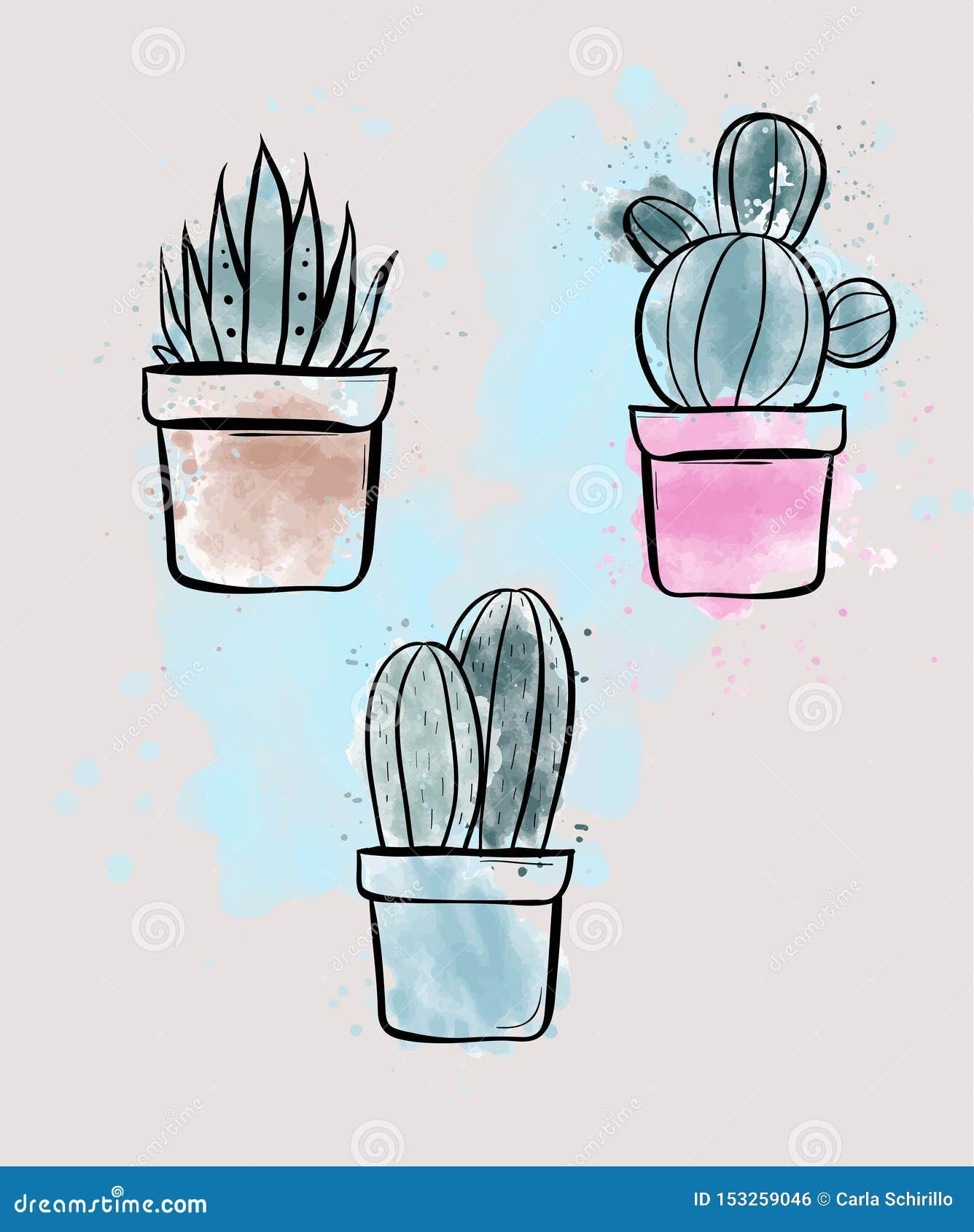 Set thee wektorowe ilustracje kaktus rośliny z akwarela skutkiem