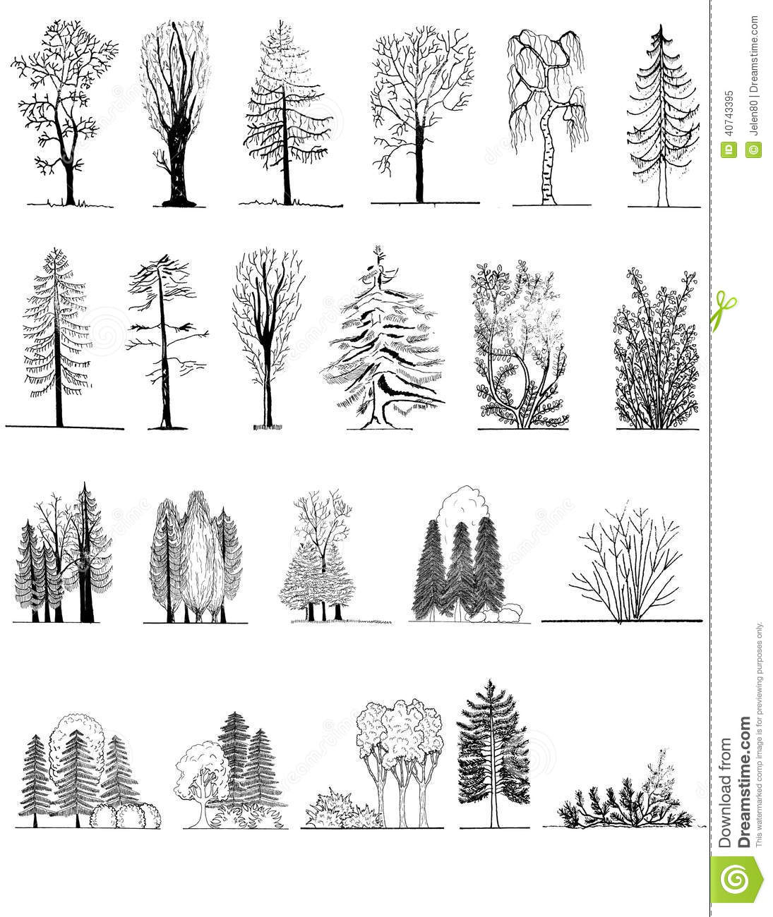 A Set Of Tree Silhouettes For Architectural Or Landscape Design