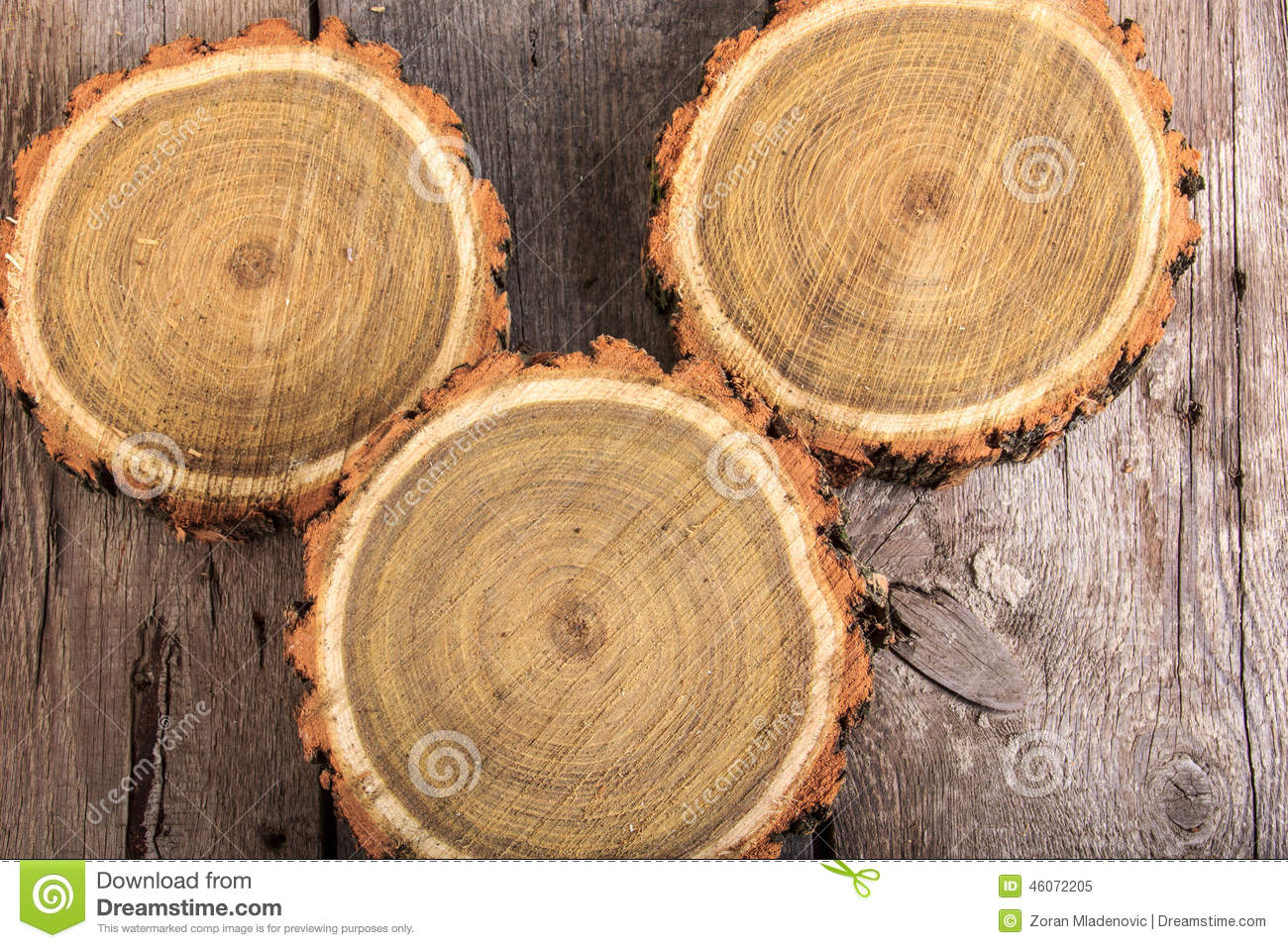 Set of tree stumps round cut with annual rings stock image for How to slice wood