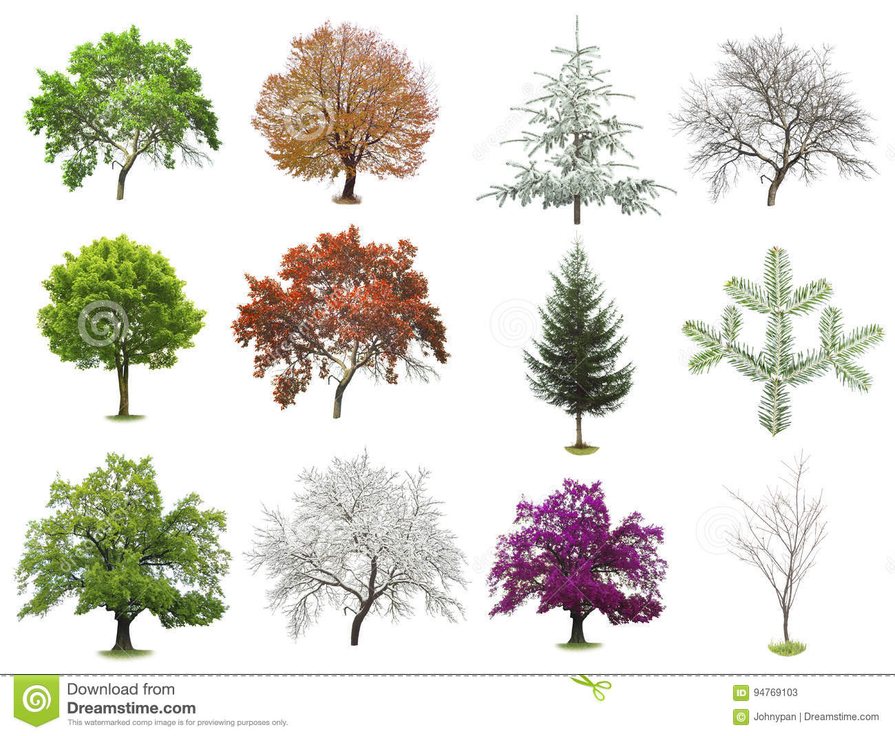 Set of trees isolated