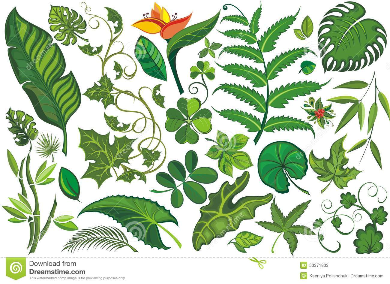 Set of Tropical Leaves stock vector. Illustration of