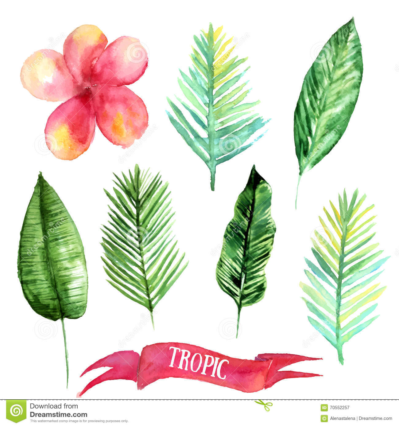 Set Of Tropical Leaves Hand Drawn Illustration In