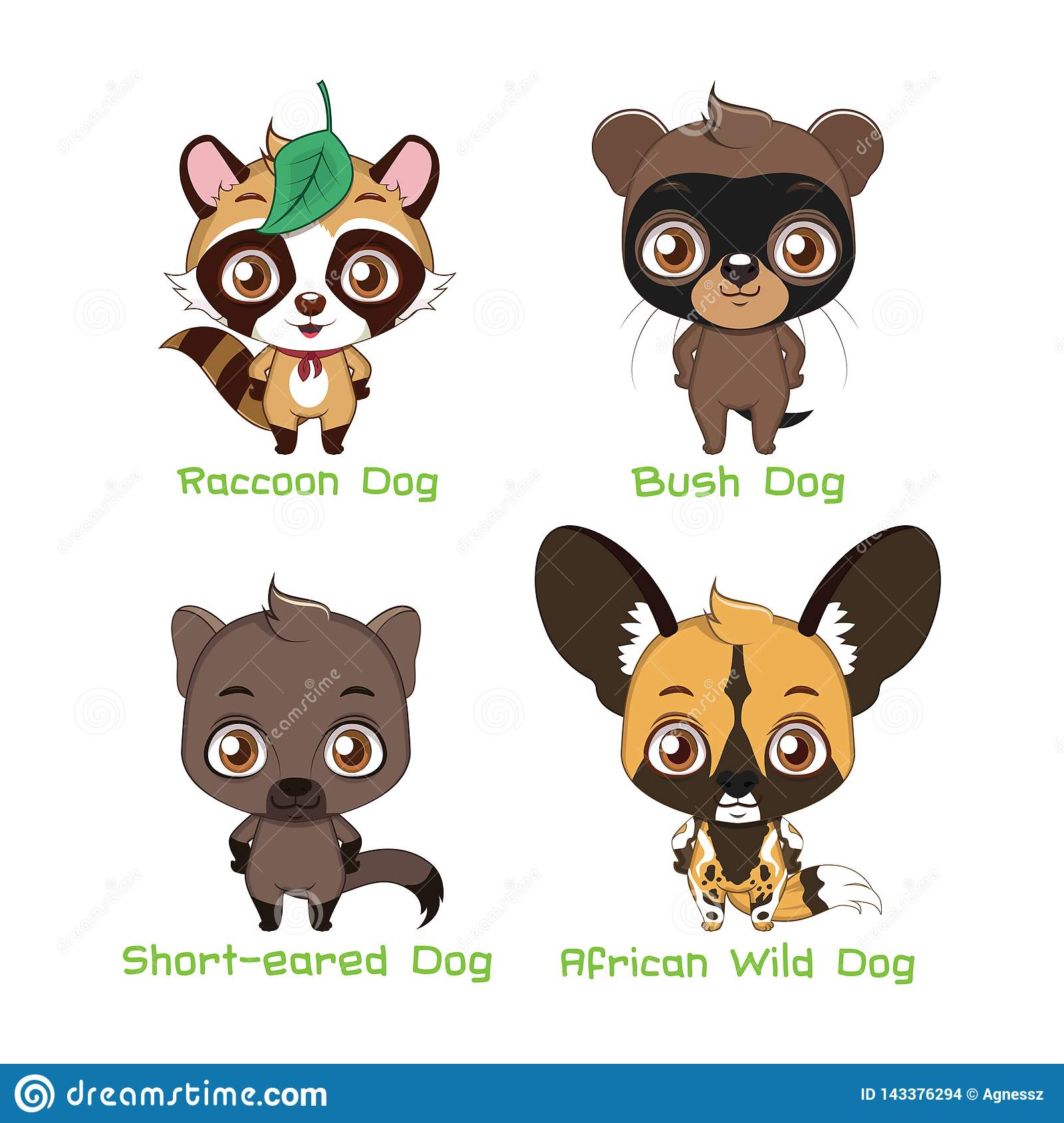 Set of various canine species