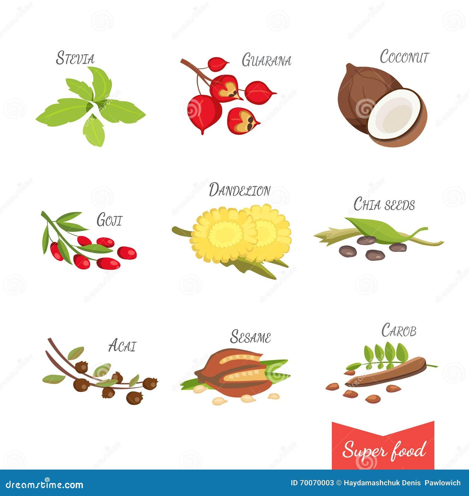 Z Natural Foods Guarana