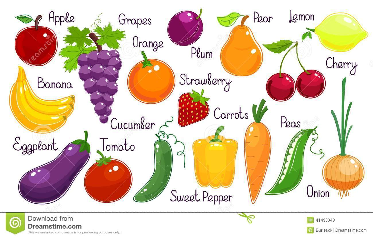 vector fruit and vegetables each labelled with onion carrot eggplant ...