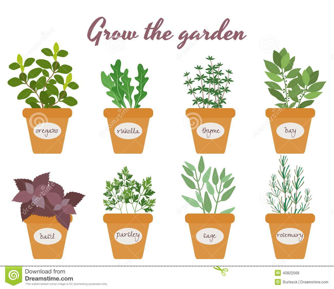 Herbs Chart Set Of Vector Herbs In Pots With Labels Stock Vector