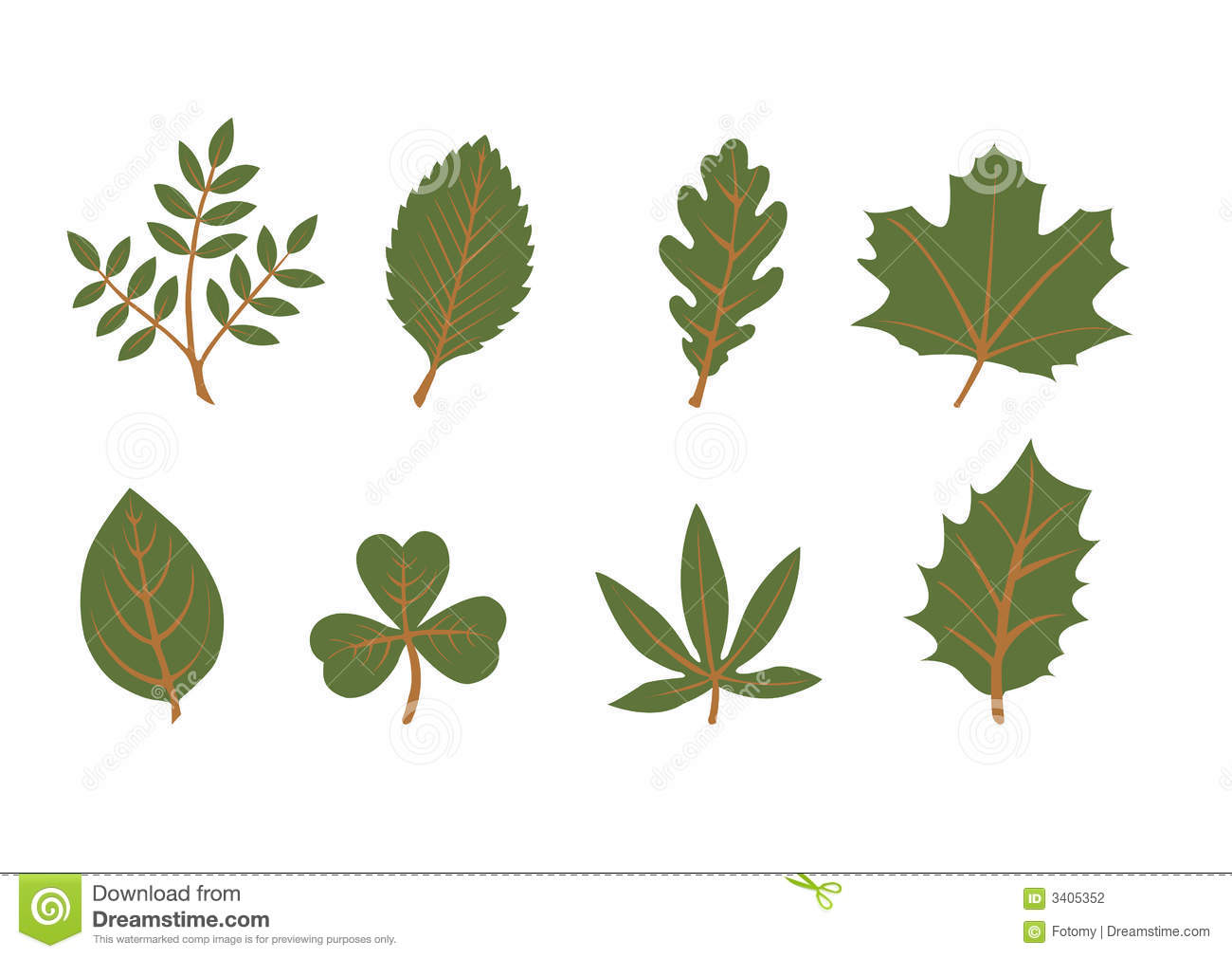 Set Of Vector Leaf Shapes Stock Photography Image 3405352