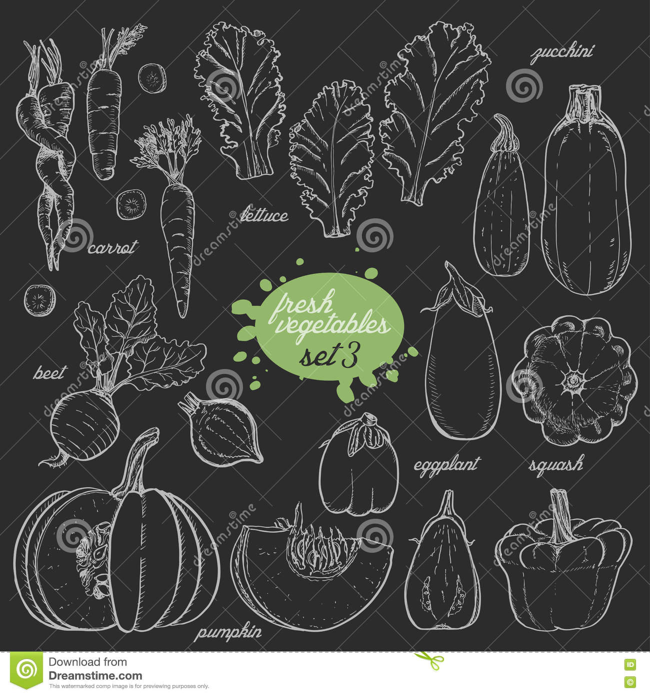 Line Drawing Zucchini : Sketch of vegetables set cartoon vector cartoondealer