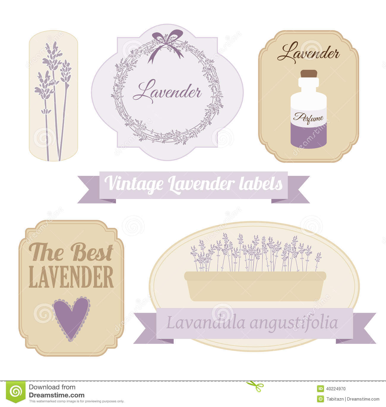 Set Of Vintage Labels With Lavender Stock Vector Image