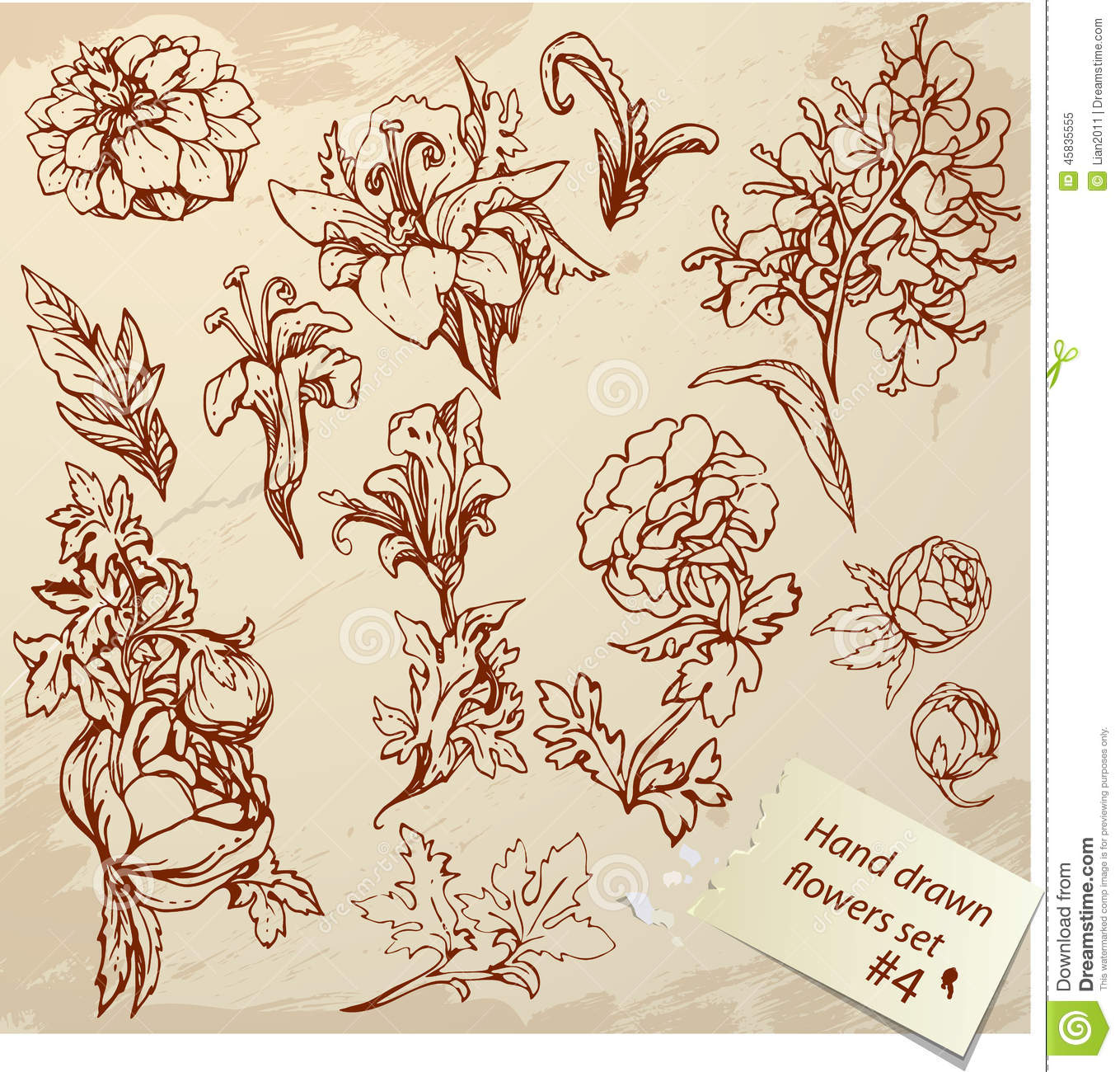 Set Of Vintage Realistic Graphic Flowers Stock Vector