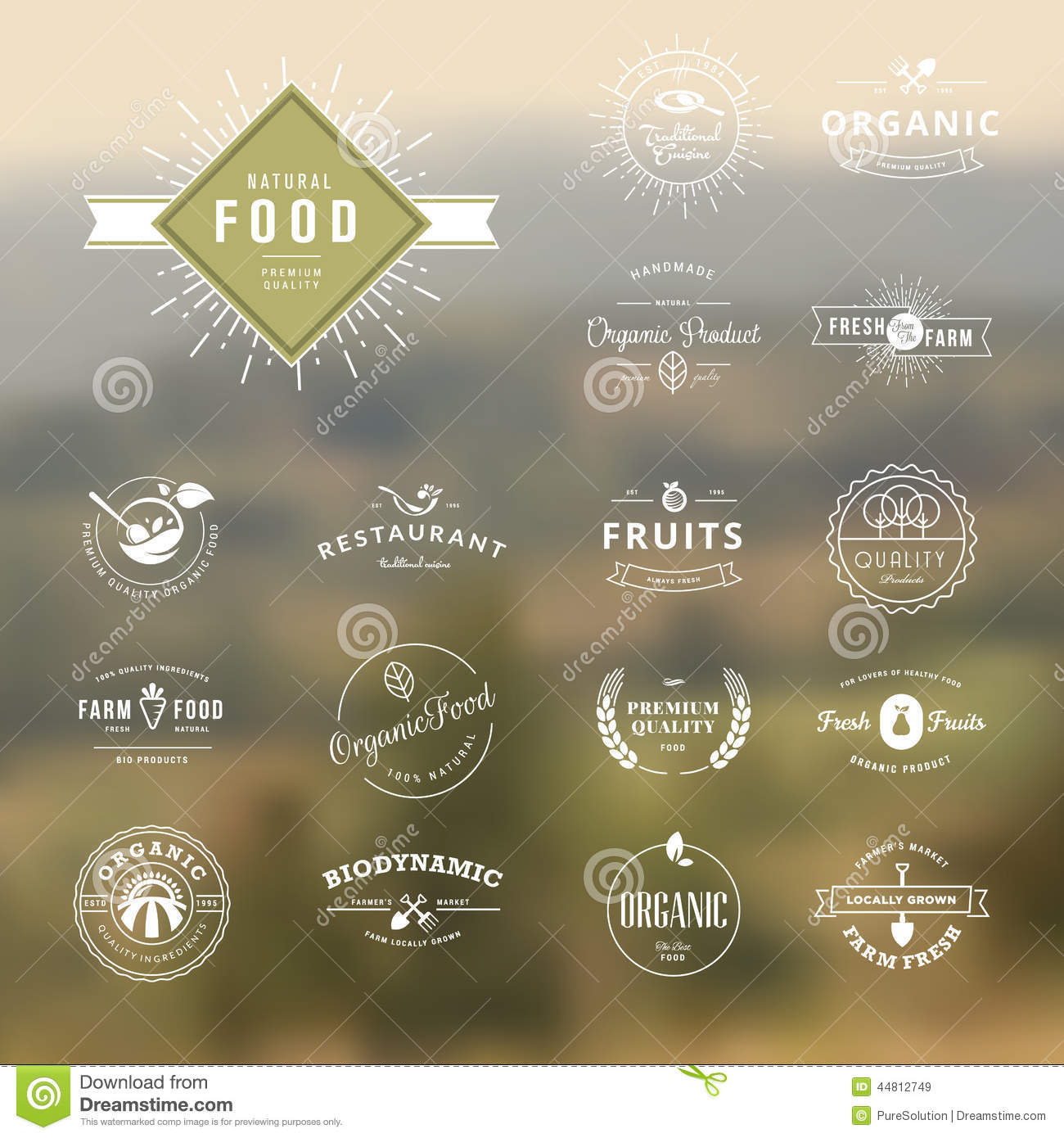 set of vintage style elements for labels and badges for