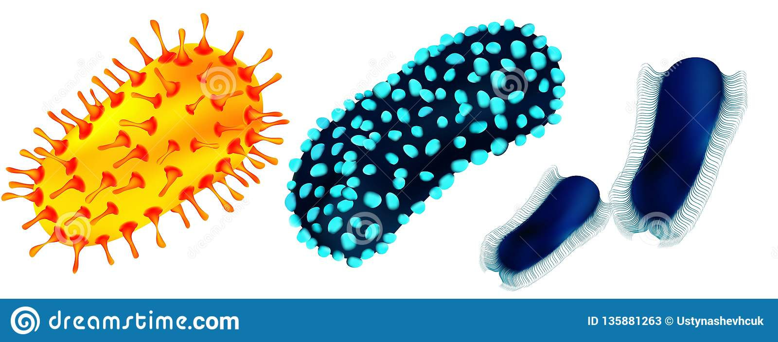 Set of viruses and bacteria isolated against a blom background. Viruses and bacteria under the microscope. Undead