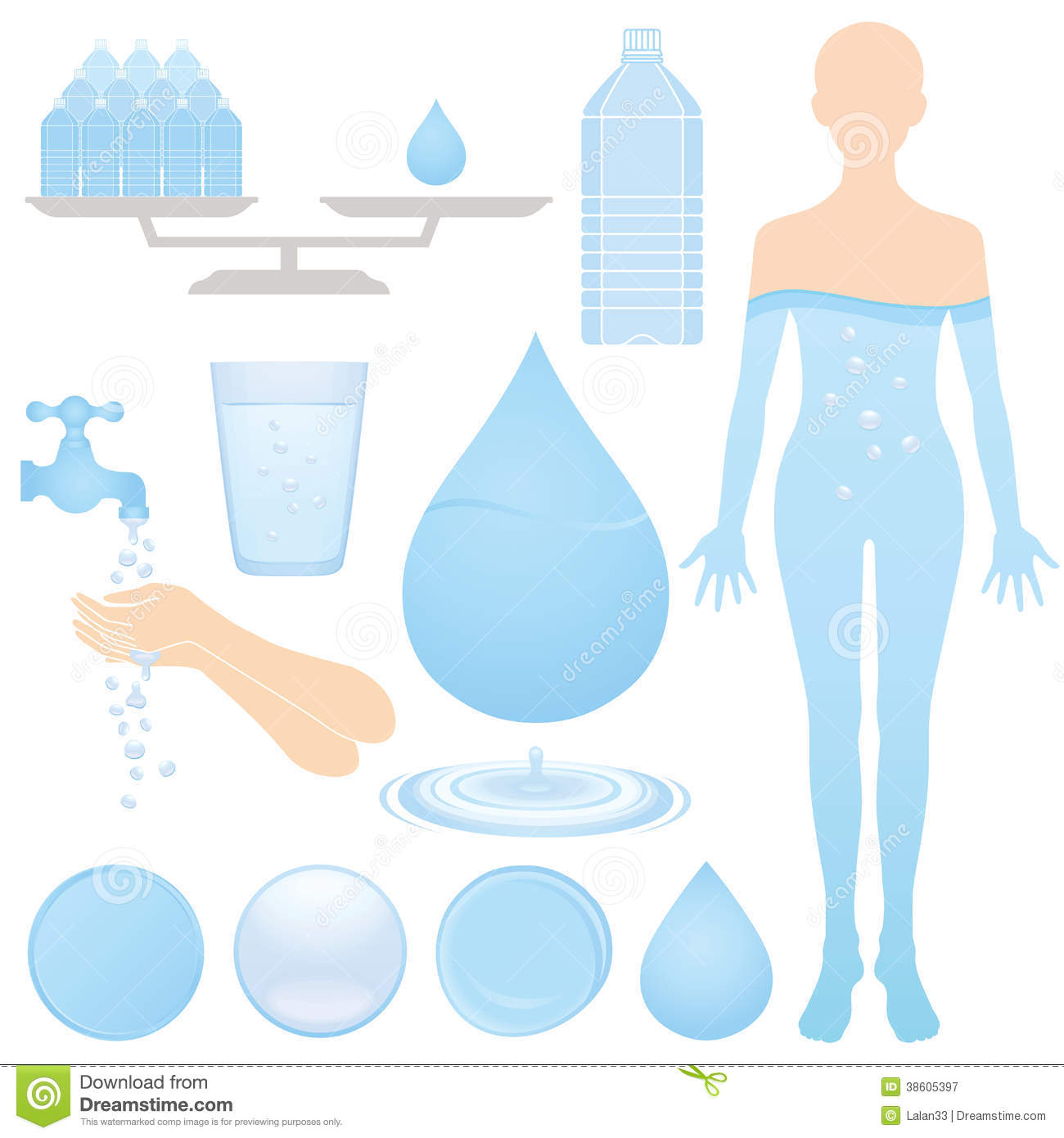 the human body and water Water is one of very few vital needs for human beings but what role does water play in our body a healthy sedentary adult living in a temperate climate should drink.